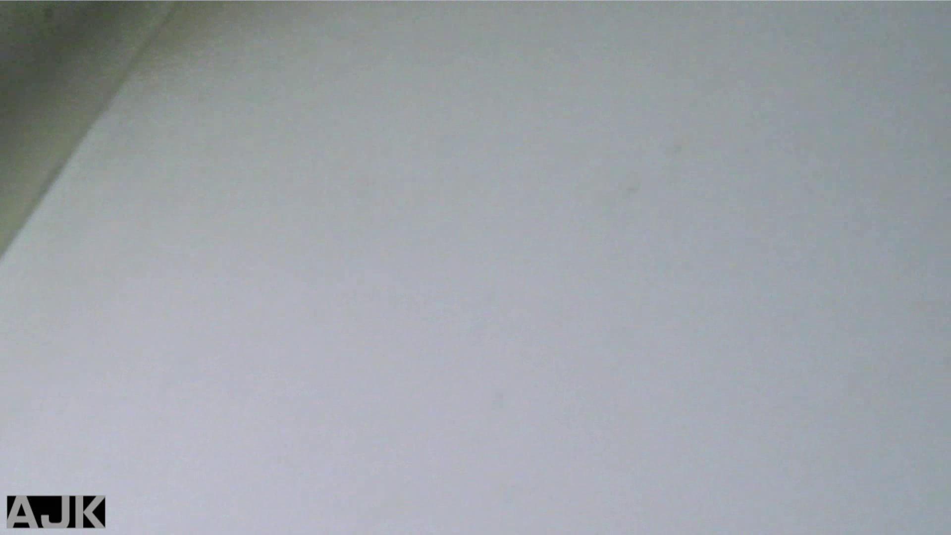 隣国上階級エリアの令嬢たちが集うデパートお手洗い Vol.03 お手洗い  98Pix 71