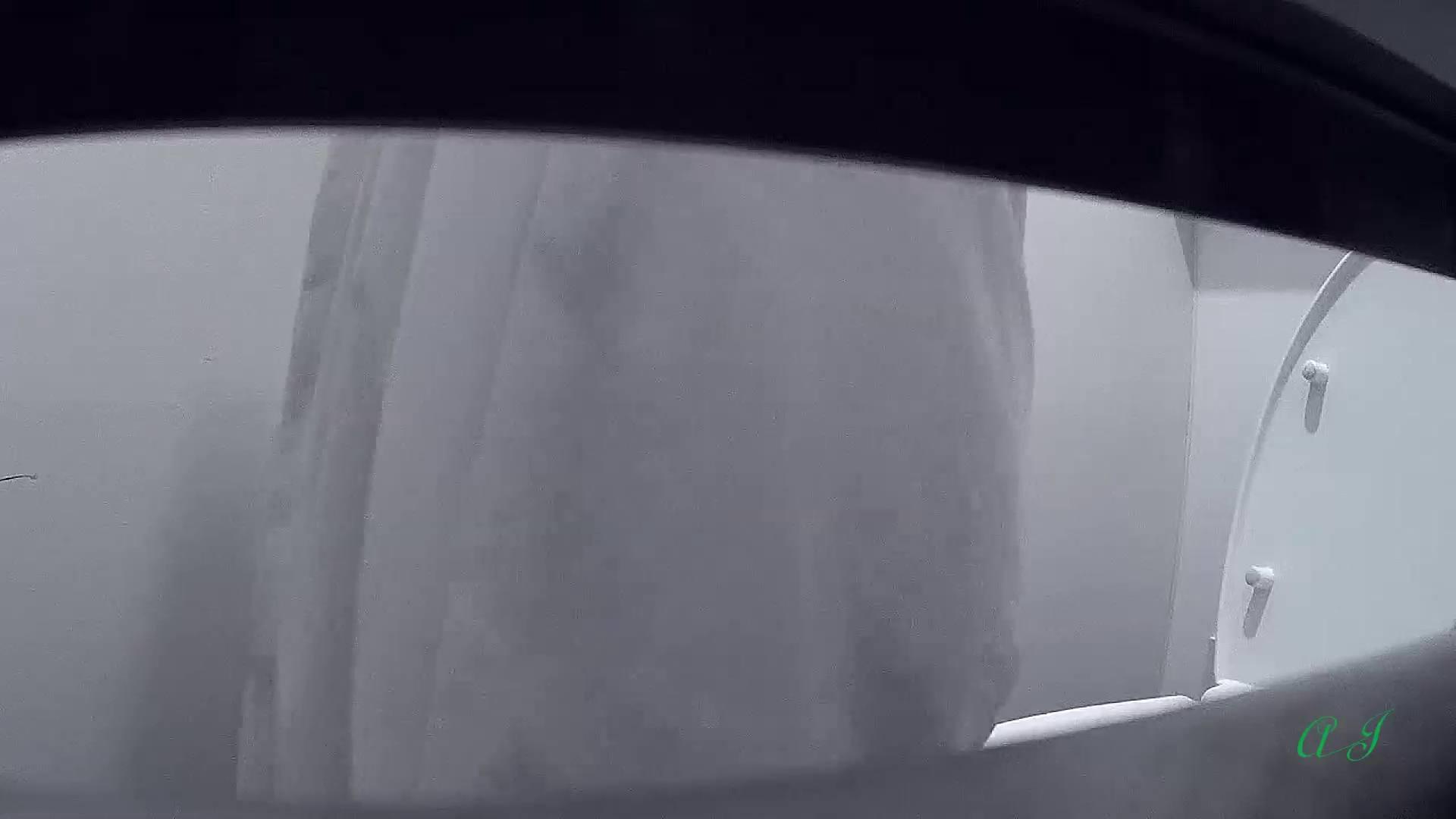 有名大学女性洗面所 vol.64 圧巻!総勢8名全員美女ばかり!! 潜入シリーズ  69Pix 6
