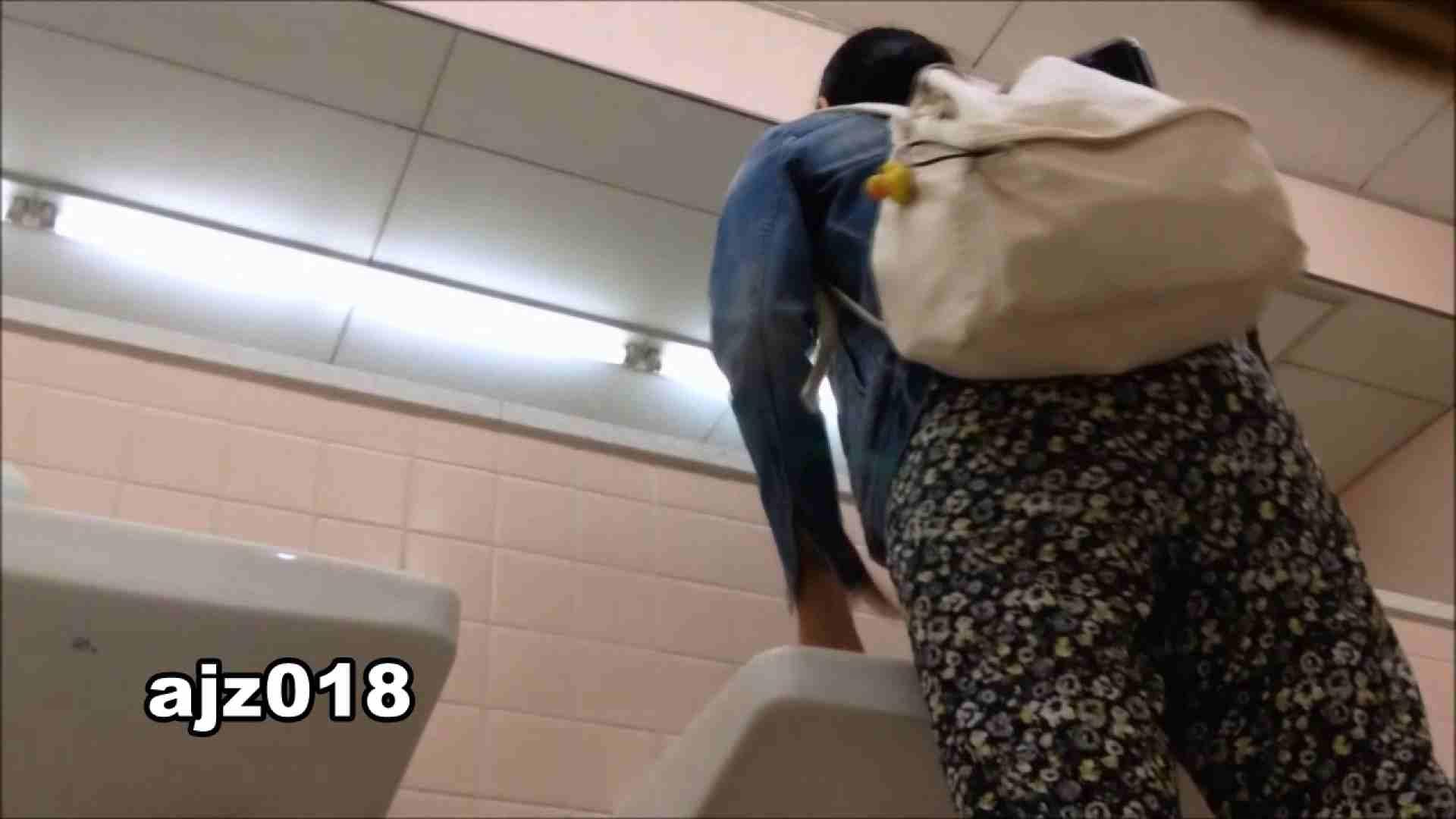 某有名大学女性洗面所 vol.18 洗面所  107Pix 55