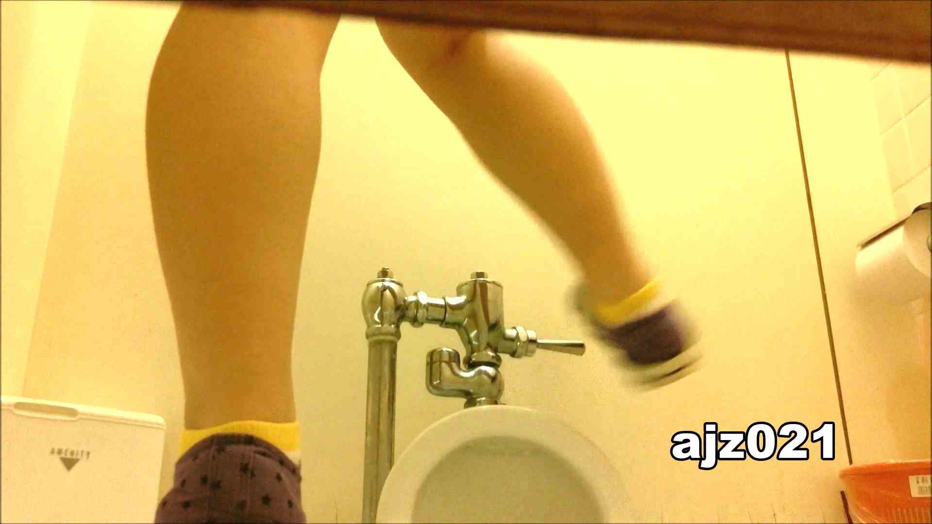 某有名大学女性洗面所 vol.21 和式  62Pix 35