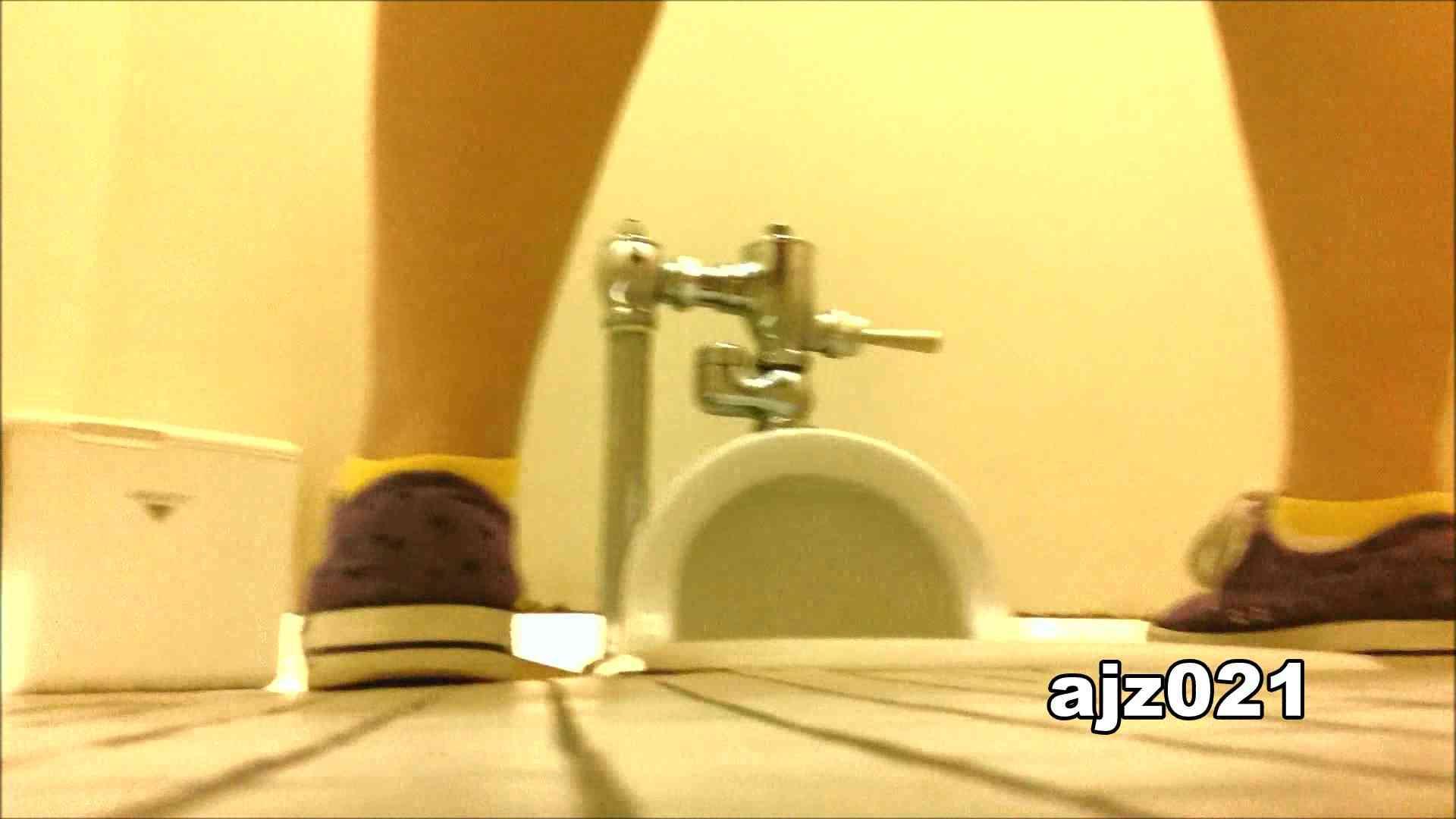 某有名大学女性洗面所 vol.21 和式  62Pix 36