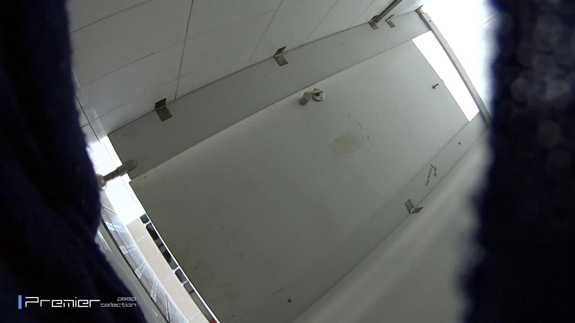 うんこがとても綺麗に出ています!有名大学休憩時間の洗面所事情05 美女ハメ撮り  58Pix 4