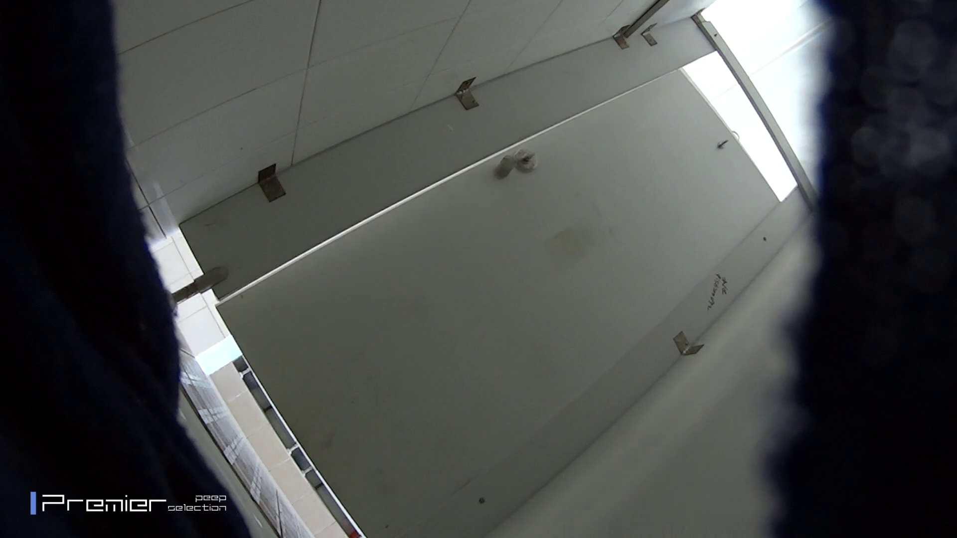 うんこがとても綺麗に出ています!有名大学休憩時間の洗面所事情05 美女ハメ撮り  58Pix 11