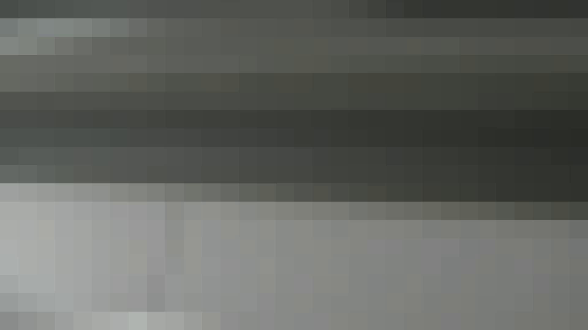 美女詰め合わせギフトvol.04 デパート+α ギャルハメ撮り  74Pix 30