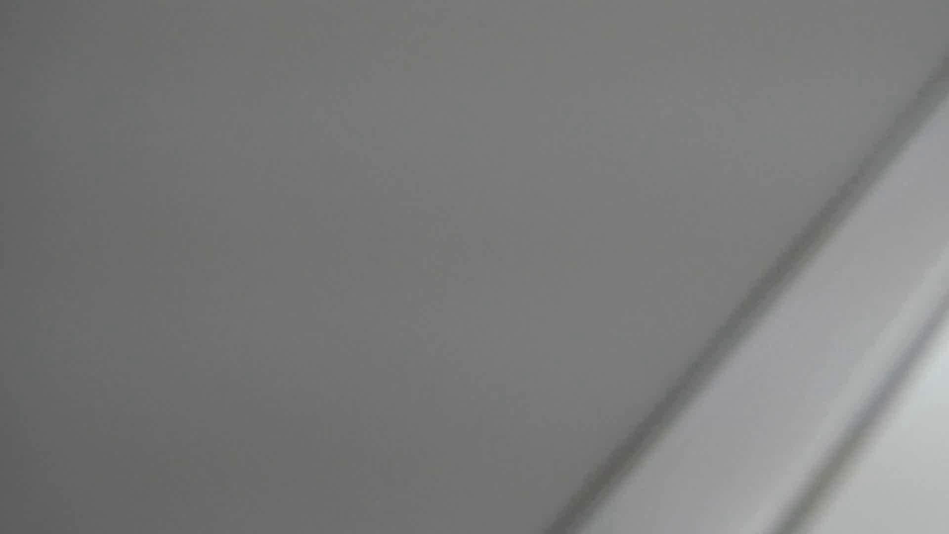 美女詰め合わせギフトvol.04 デパート+α ギャルハメ撮り  74Pix 32