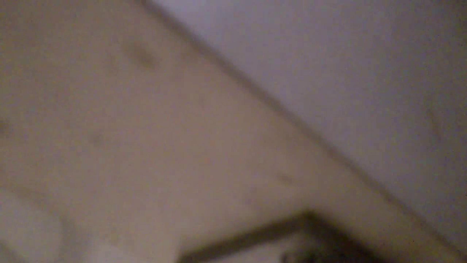 美女詰め合わせギフトvol.05 何時もの場所ではないですが・・・ 美女ハメ撮り  30Pix 17