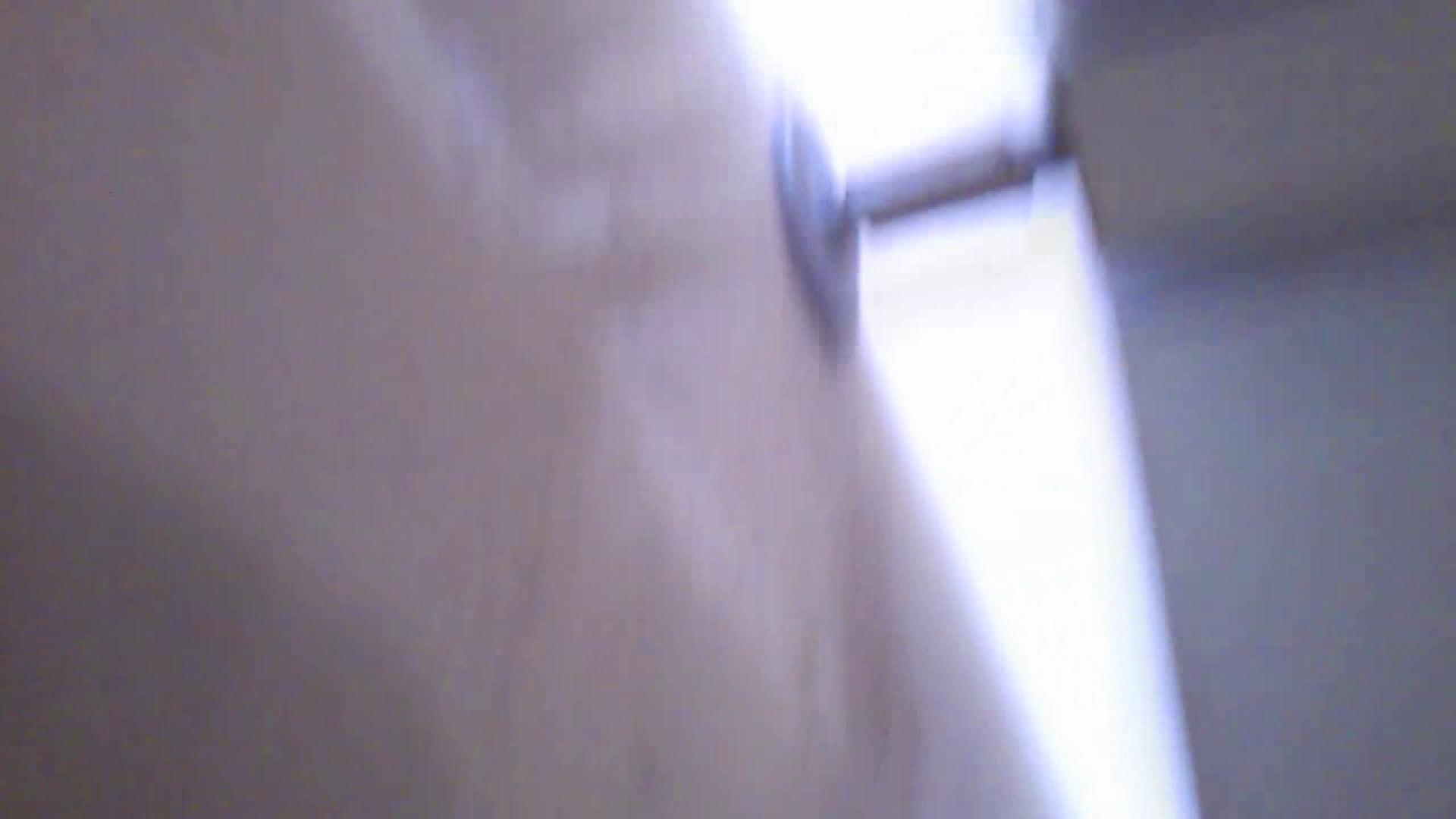美女詰め合わせギフトvol.05 何時もの場所ではないですが・・・ 美女ハメ撮り  30Pix 25