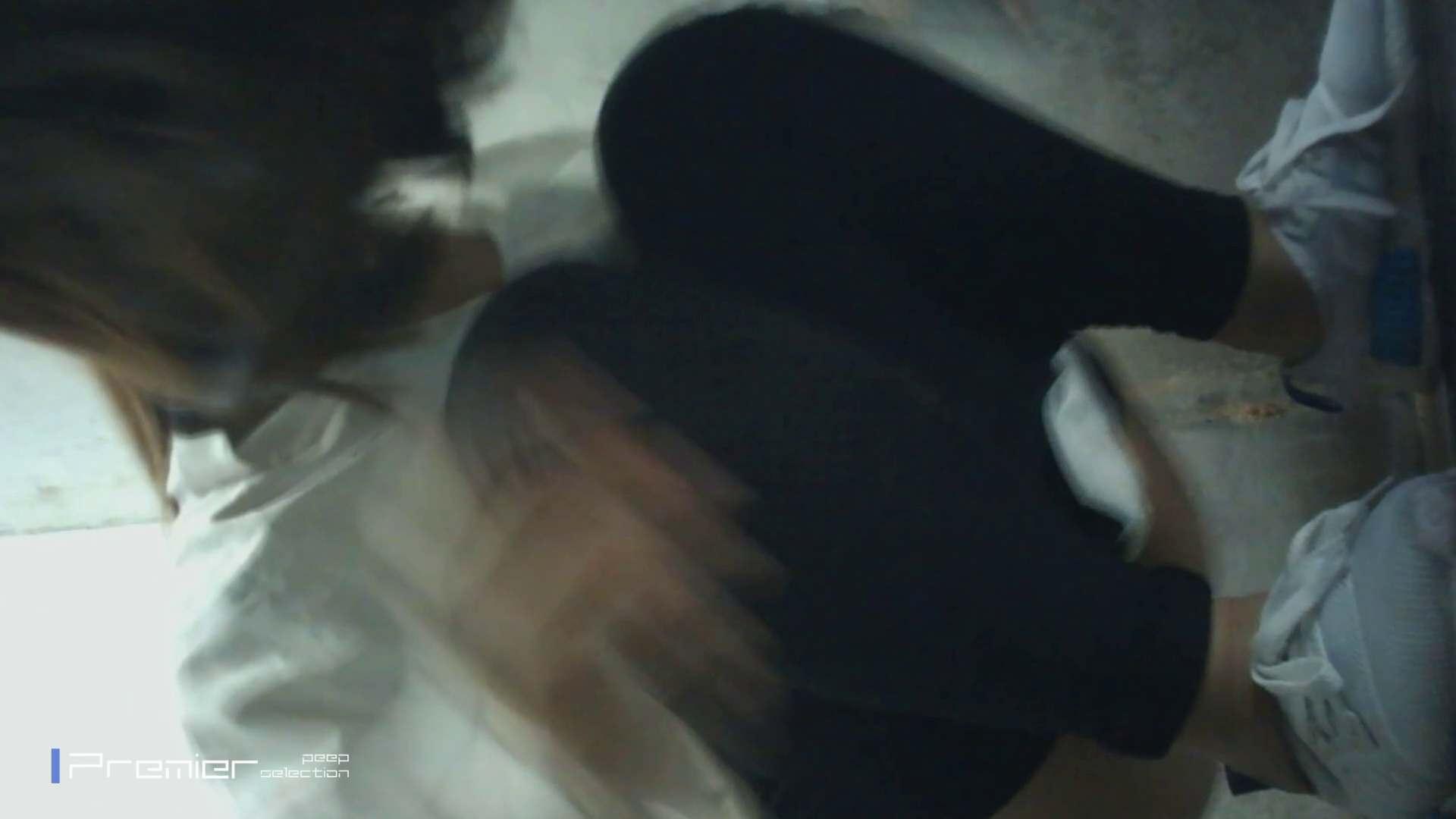 おとなしそうな女の子 トイレシーンを密着盗撮!! 美女の痴態に密着!Vol.24 美女ハメ撮り  49Pix 19