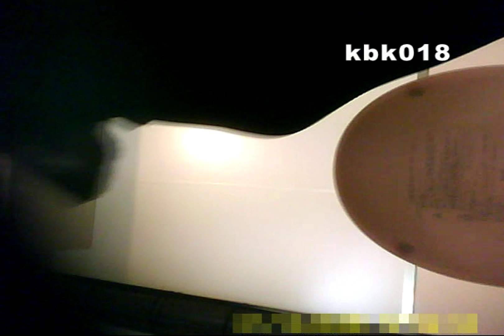 大切なことなので違う角度から2度眺めてみた vol.018 OLハメ撮り  100Pix 30