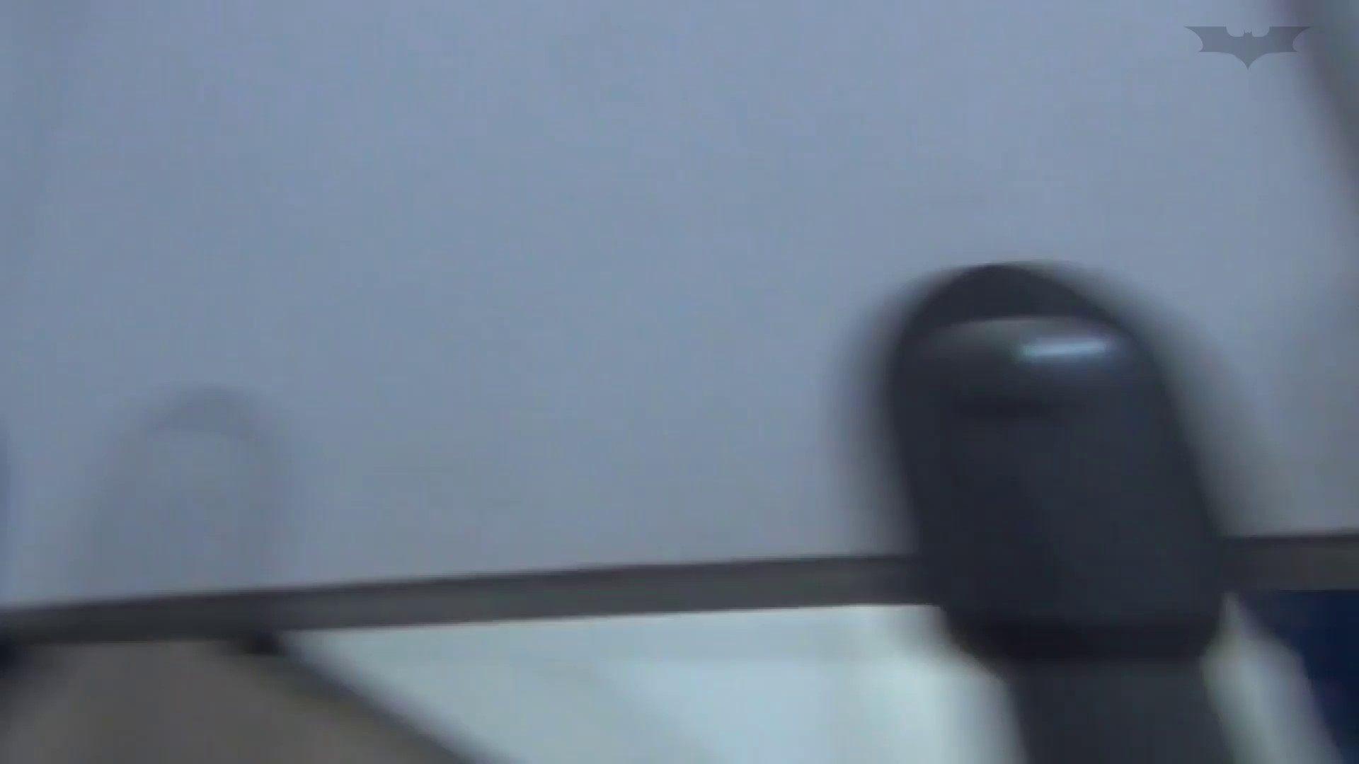 JD盗撮 美女の洗面所の秘密 Vol.48 OLハメ撮り  84Pix 21