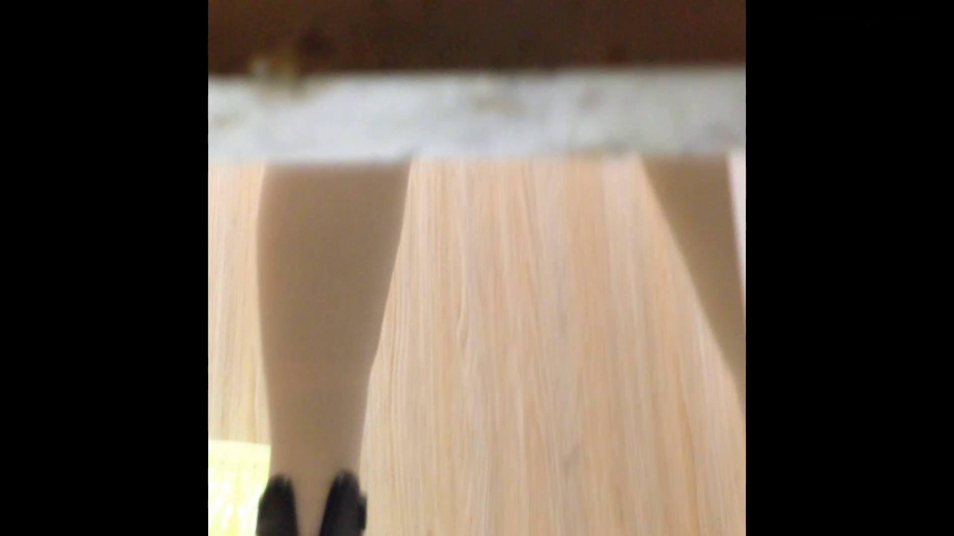 芸術大学ガチ潜入盗撮 JD盗撮 美女の洗面所の秘密 Vol.86 OLハメ撮り  58Pix 49