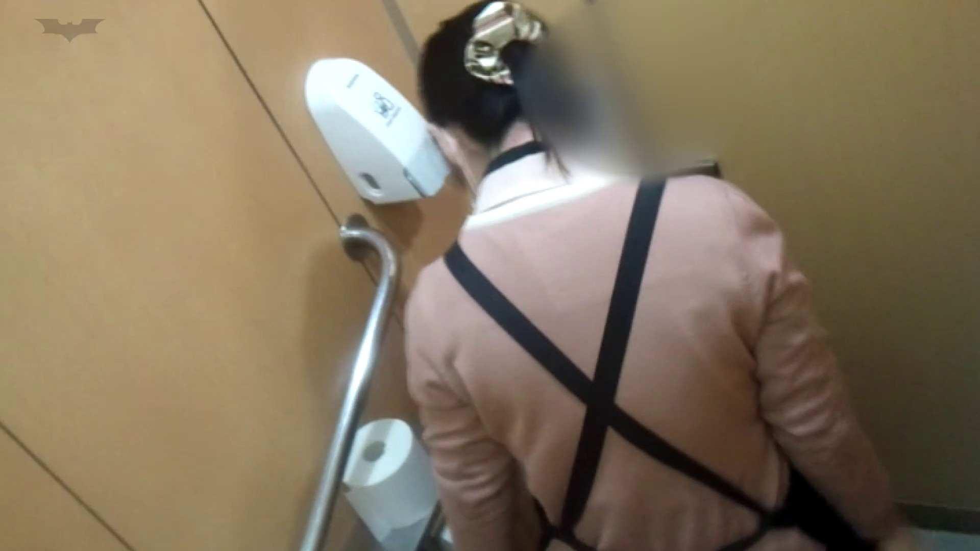化粧室絵巻 商い場編 VOL.23 OLハメ撮り  52Pix 29