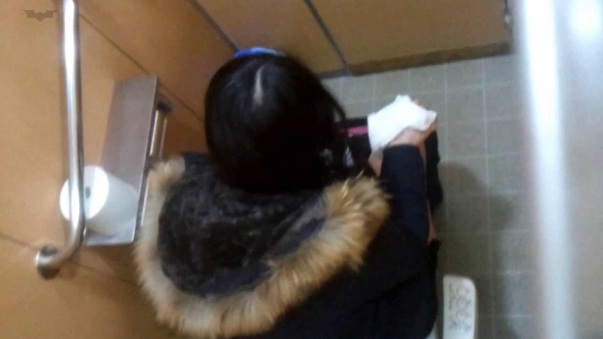 化粧室絵巻 商い場編 VOL.27 OLハメ撮り  95Pix 54