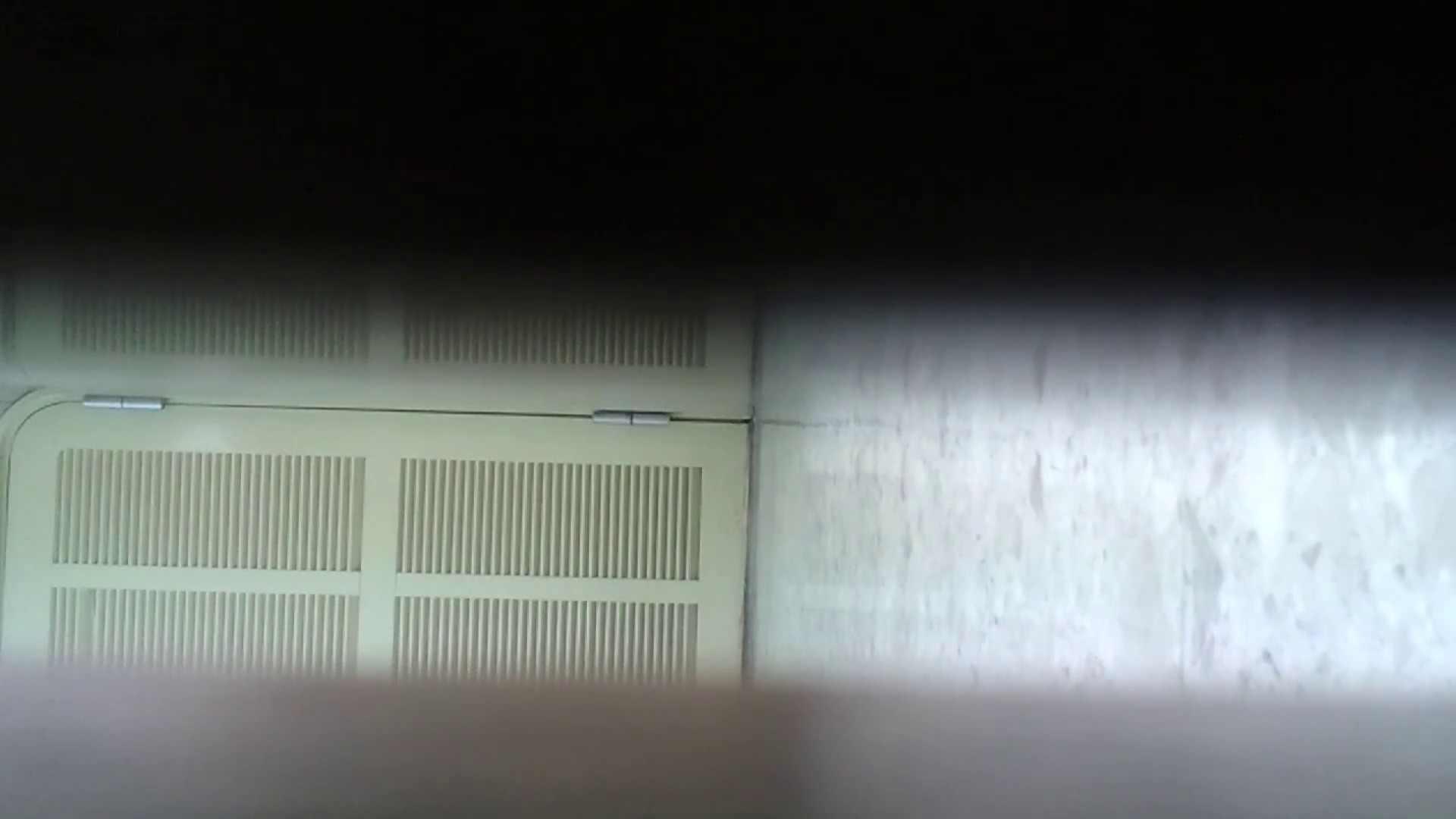 化粧室絵巻 番外編 VOL.15 美女ハメ撮り  99Pix 96