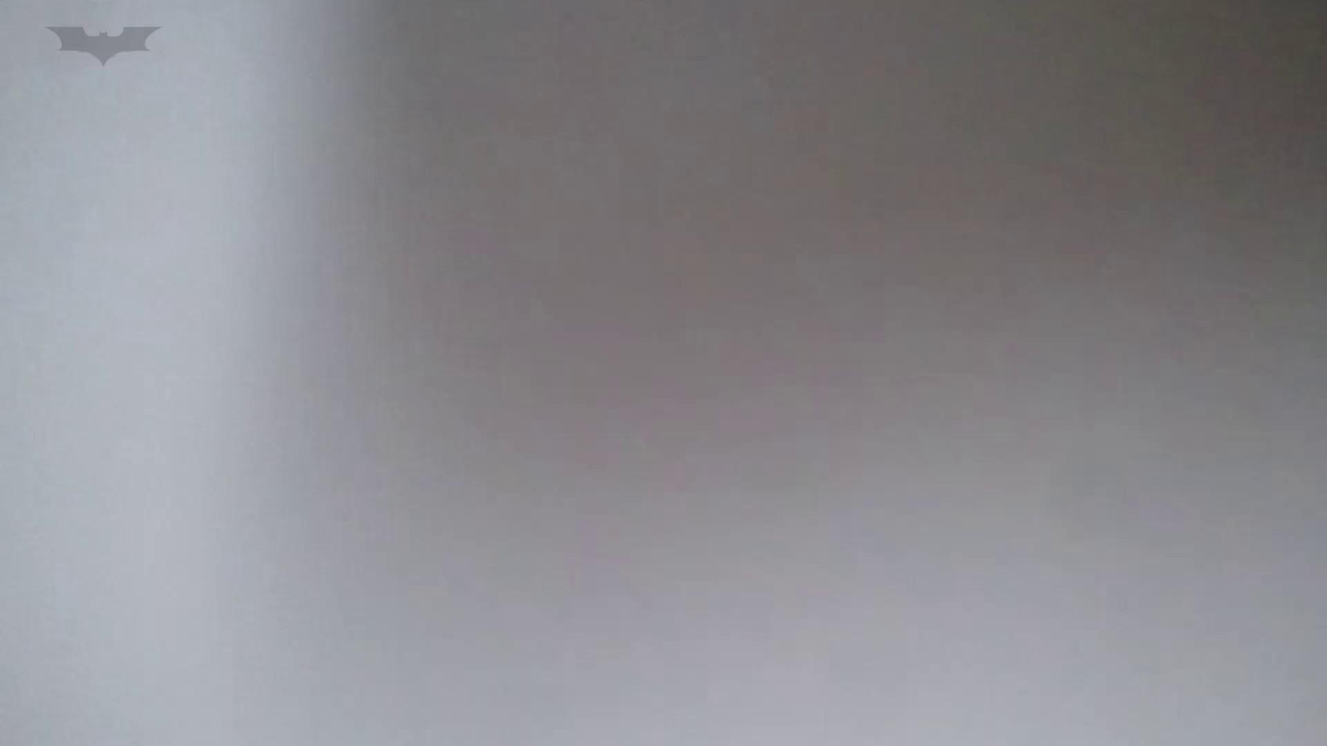 化粧室絵巻 番外編 VOL.22 OLハメ撮り  27Pix 19