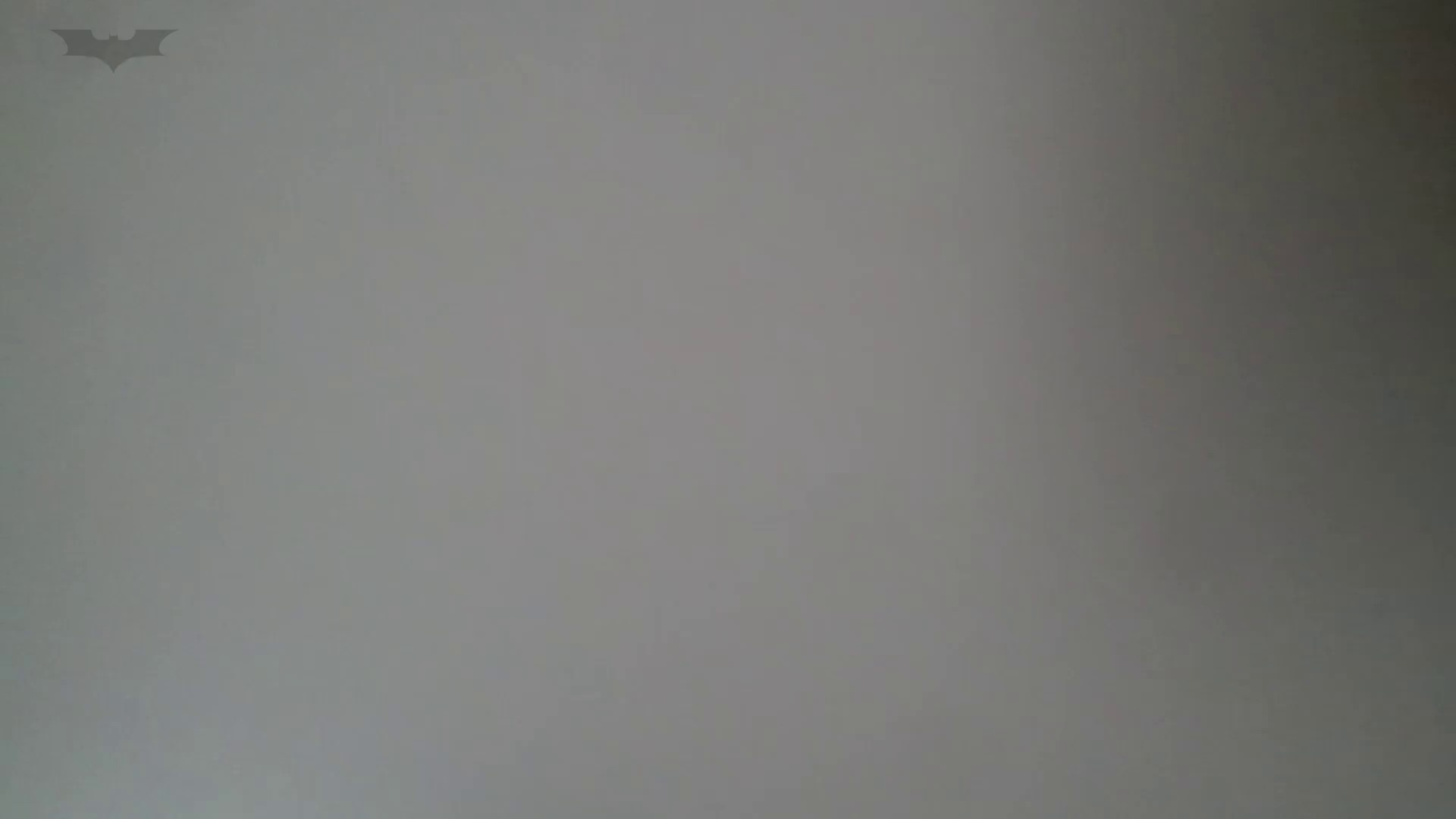 化粧室絵巻 番外編 VOL.22 OLハメ撮り  27Pix 26