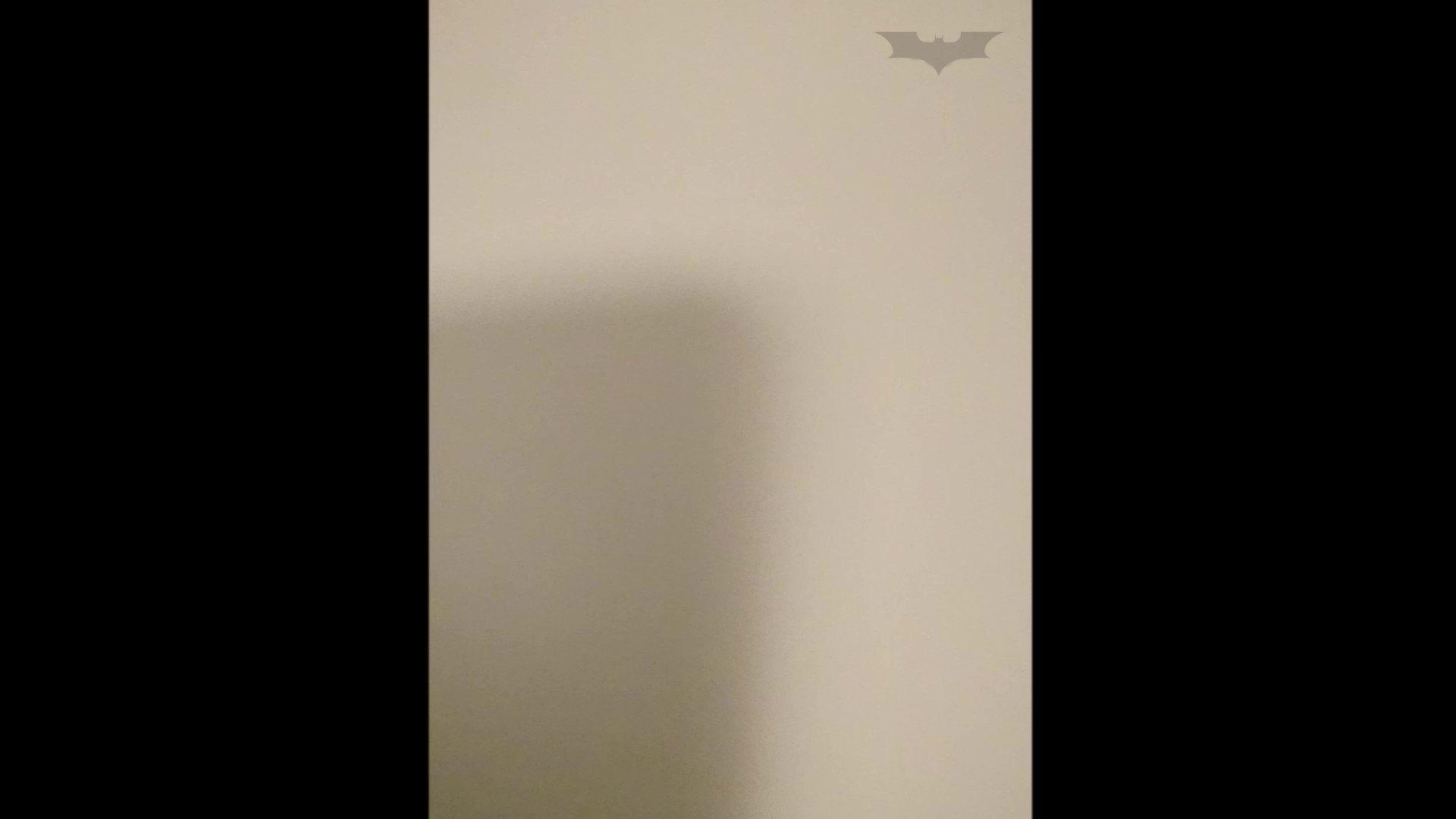 化粧室絵巻 ショッピングモール編 VOL.03 高画質  105Pix 73