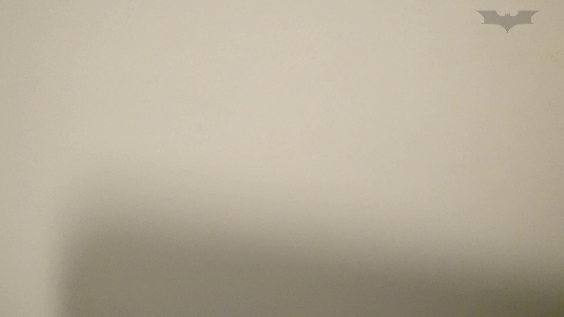 化粧室絵巻 ショッピングモール編 VOL.08 OLハメ撮り  77Pix 4