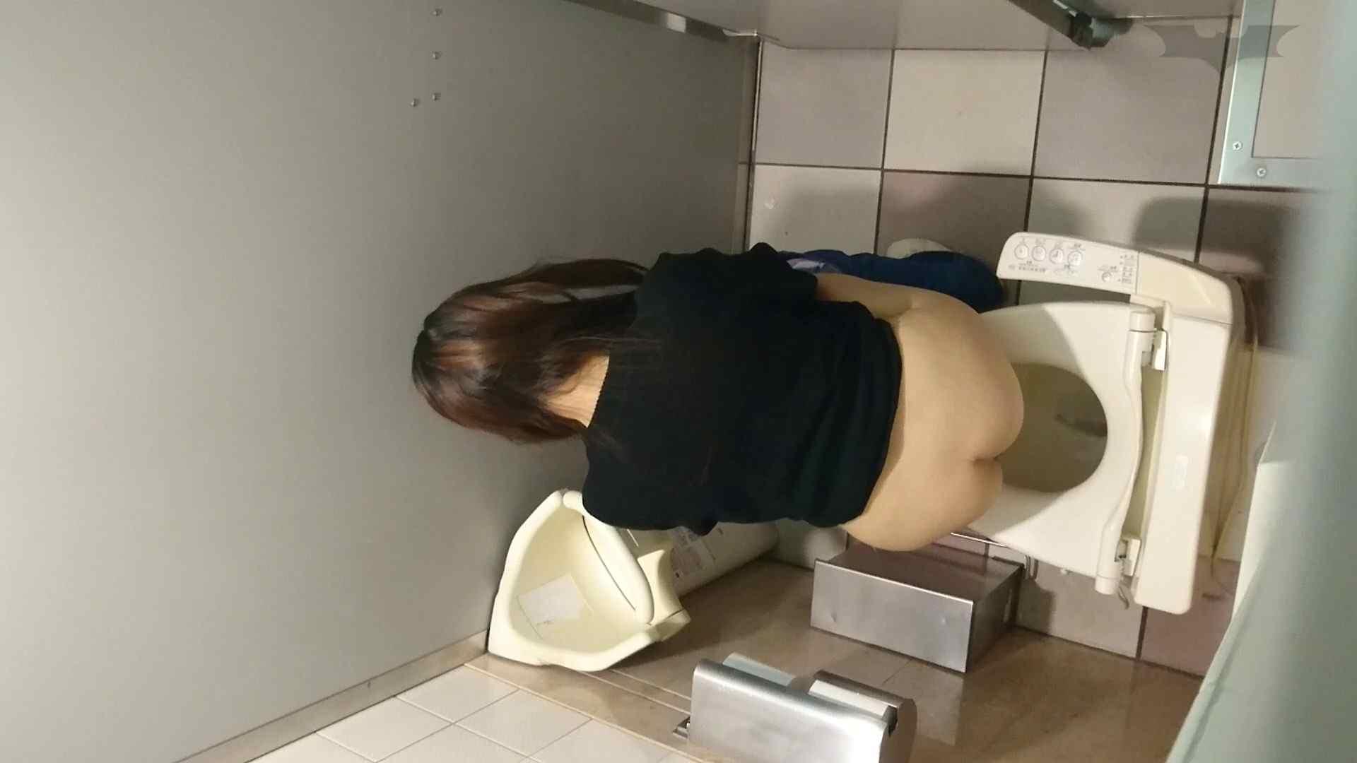 化粧室絵巻 ショッピングモール編 VOL.08 OLハメ撮り  77Pix 36