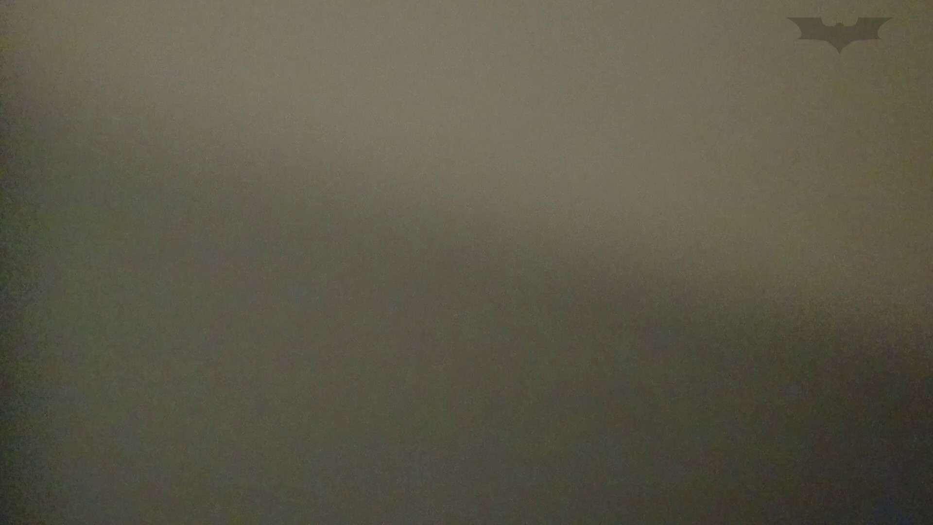 化粧室絵巻 ショッピングモール編 VOL.08 OLハメ撮り  77Pix 44