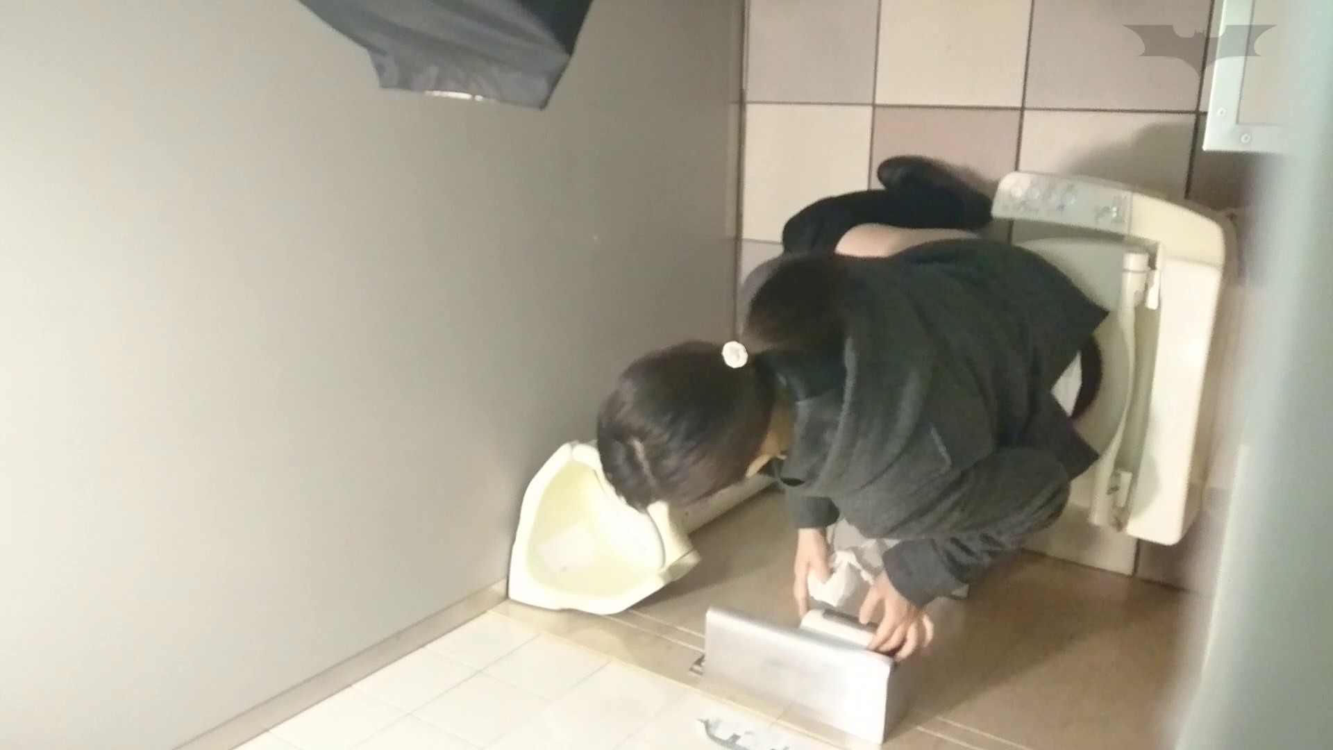 化粧室絵巻 ショッピングモール編 VOL.08 OLハメ撮り  77Pix 66