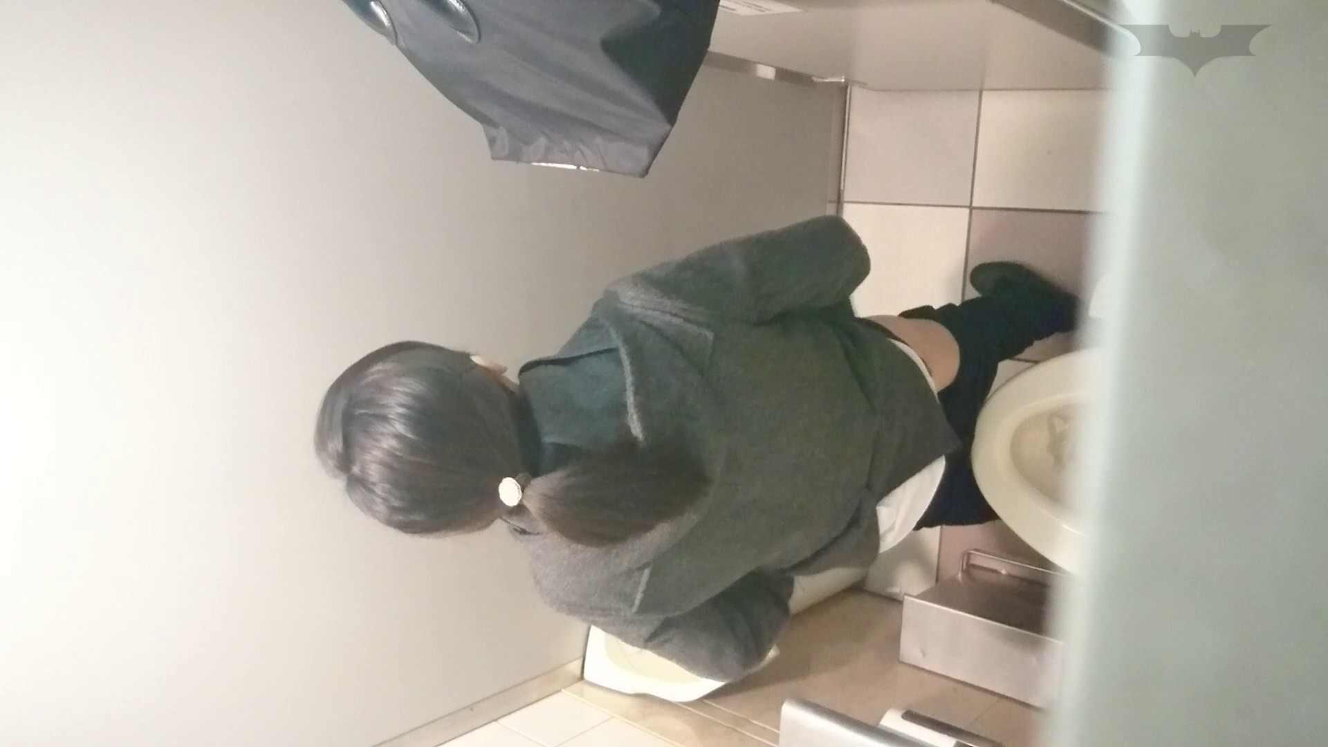 化粧室絵巻 ショッピングモール編 VOL.08 OLハメ撮り  77Pix 74