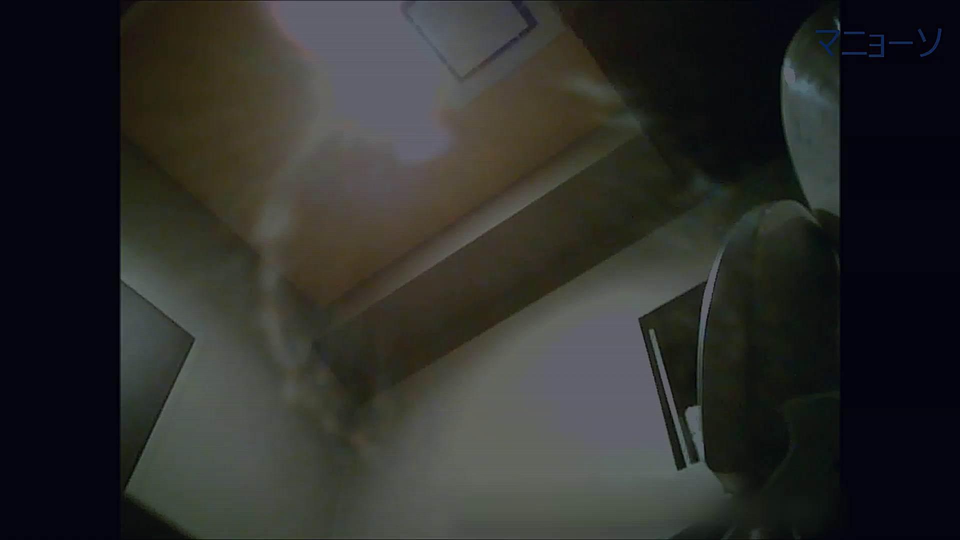 トイレでひと肌脱いでもらいました (OL編)Vol.12 リアルトイレ  57Pix 51