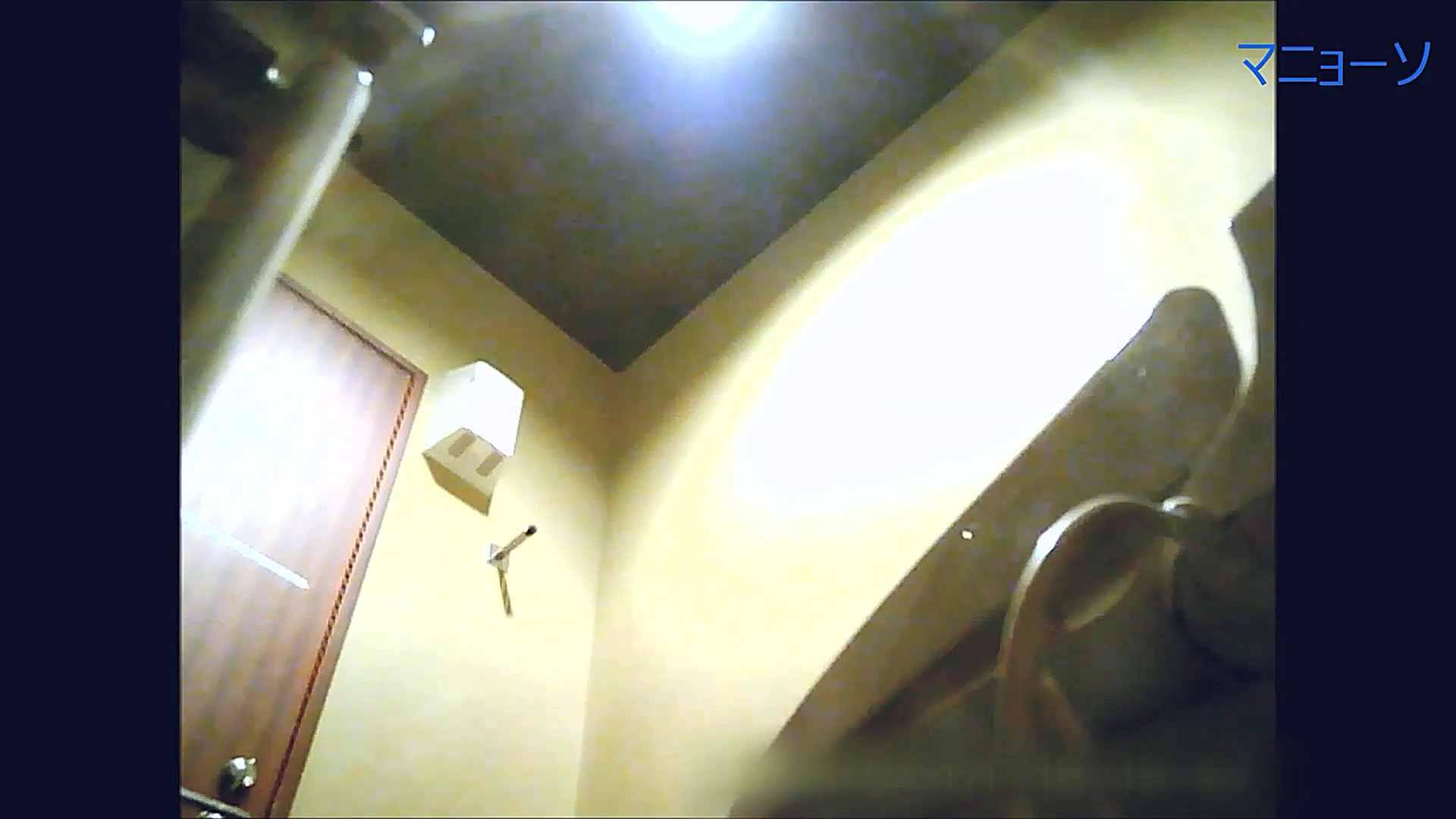 トイレでひと肌脱いでもらいました (OL編)Vol.15 OLハメ撮り  30Pix 28