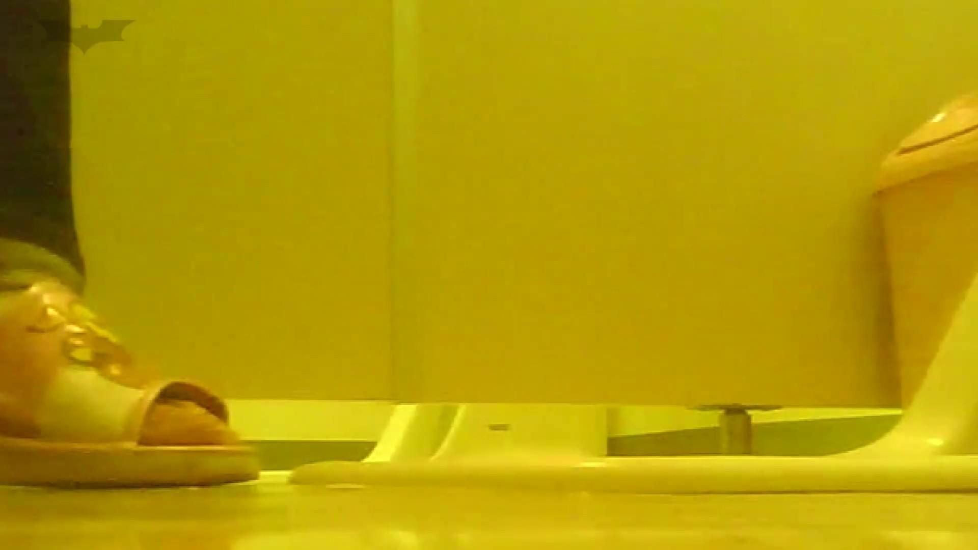 夏の思い出浜辺トイレ盗撮Vol.19 潜入シリーズ  86Pix 45
