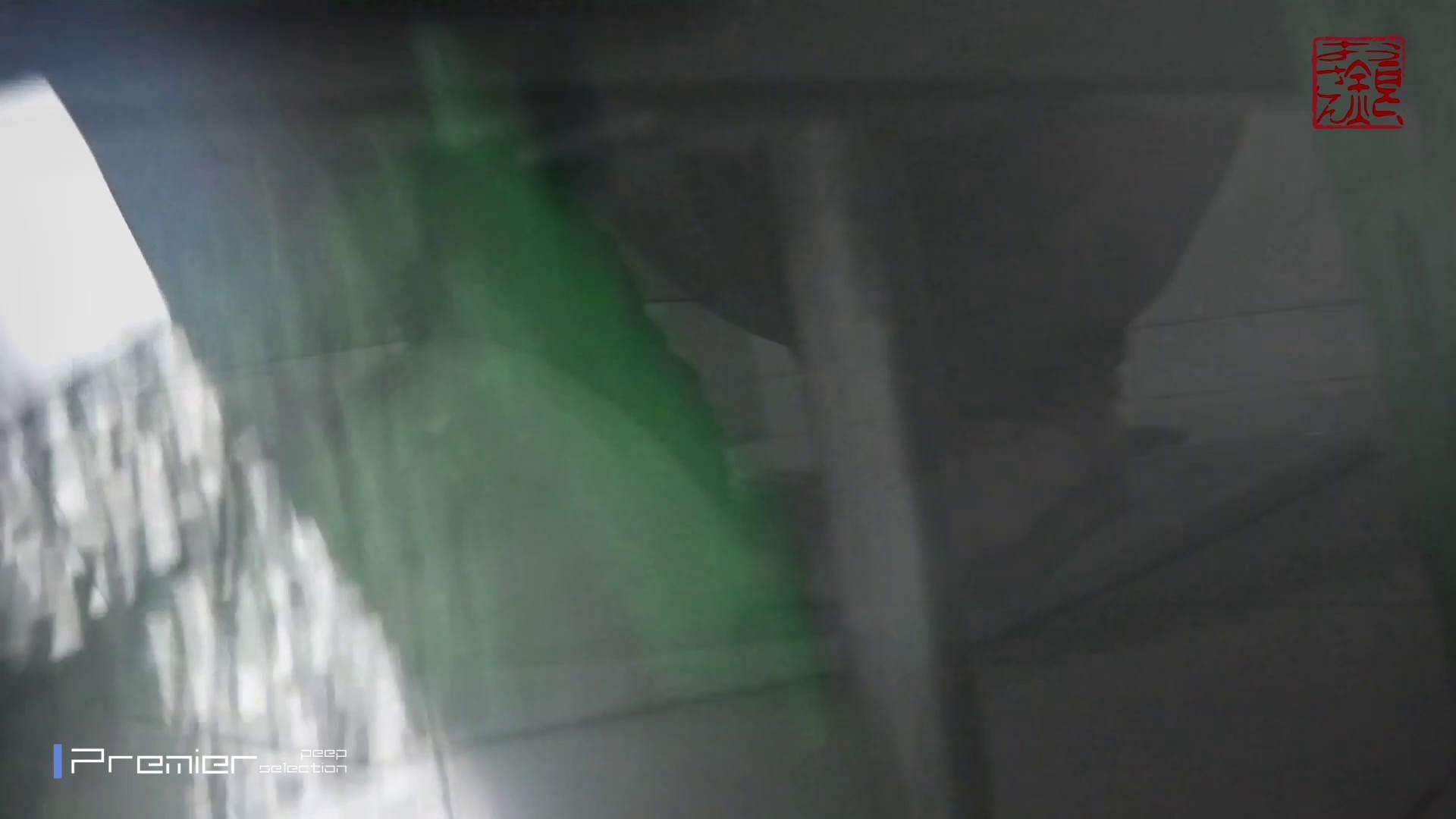 お銀さんの「洗面所突入レポート!!」Nol.7 OLハメ撮り  93Pix 8