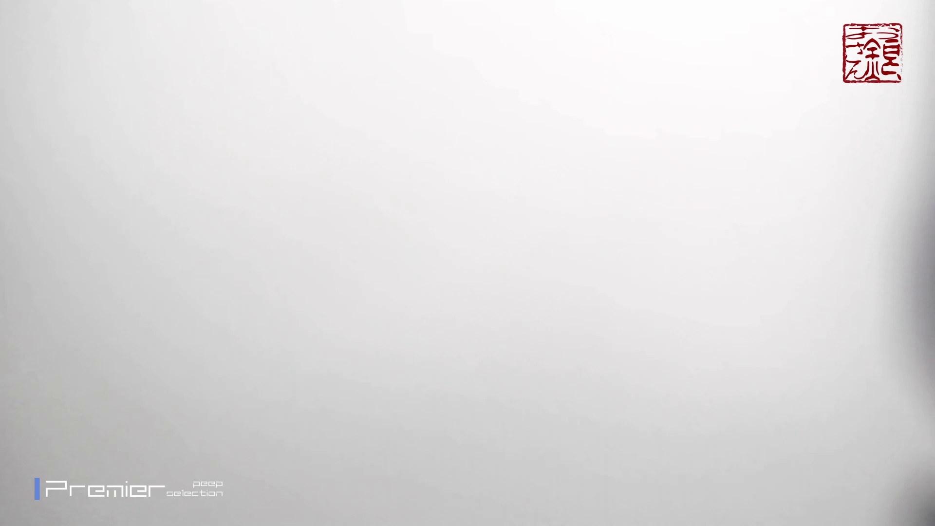 お銀さんの「洗面所突入レポート!!」Nol.7 OLハメ撮り  93Pix 19