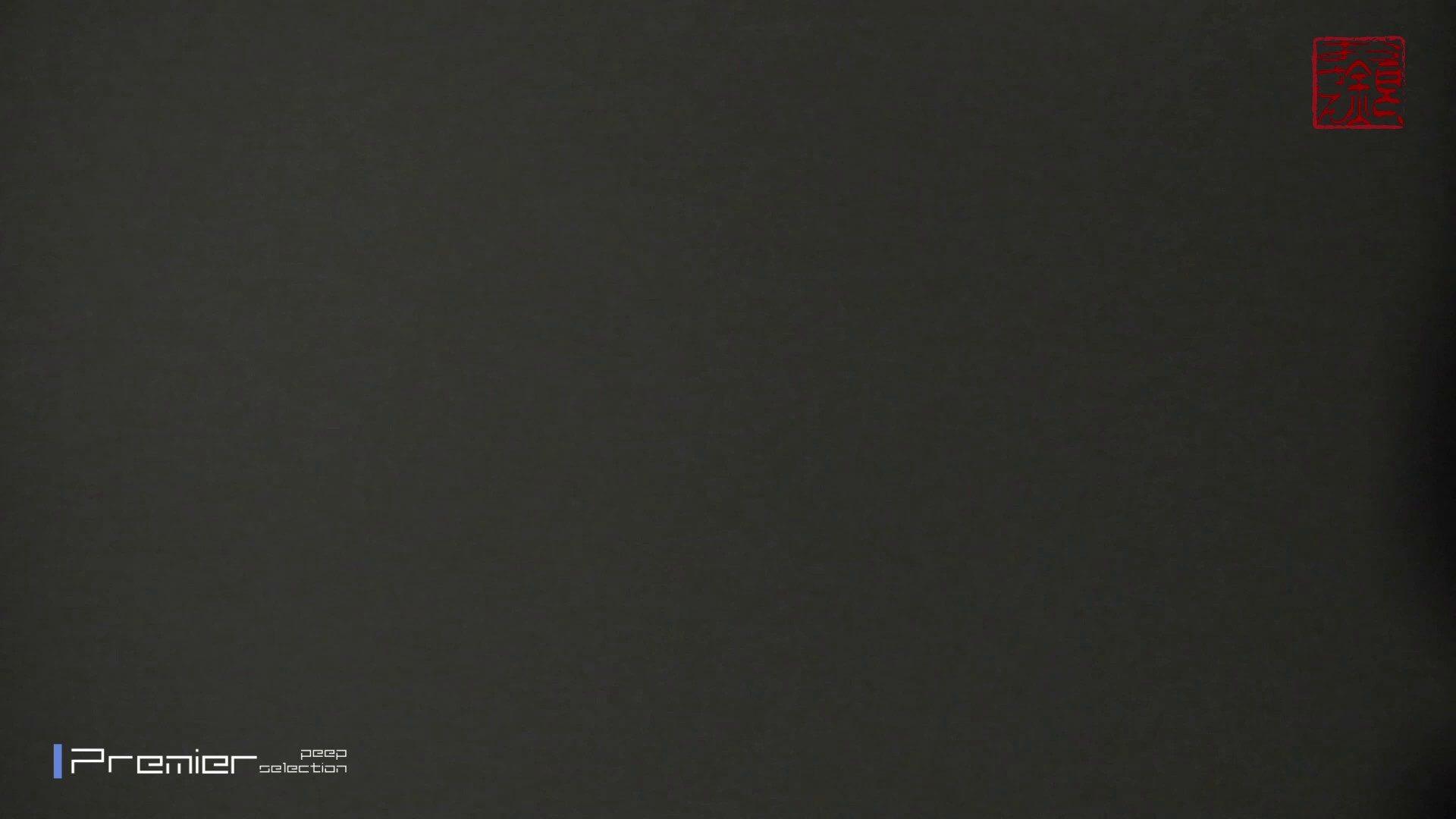 お銀さんの「洗面所突入レポート!!」Nol.7 OLハメ撮り  93Pix 63