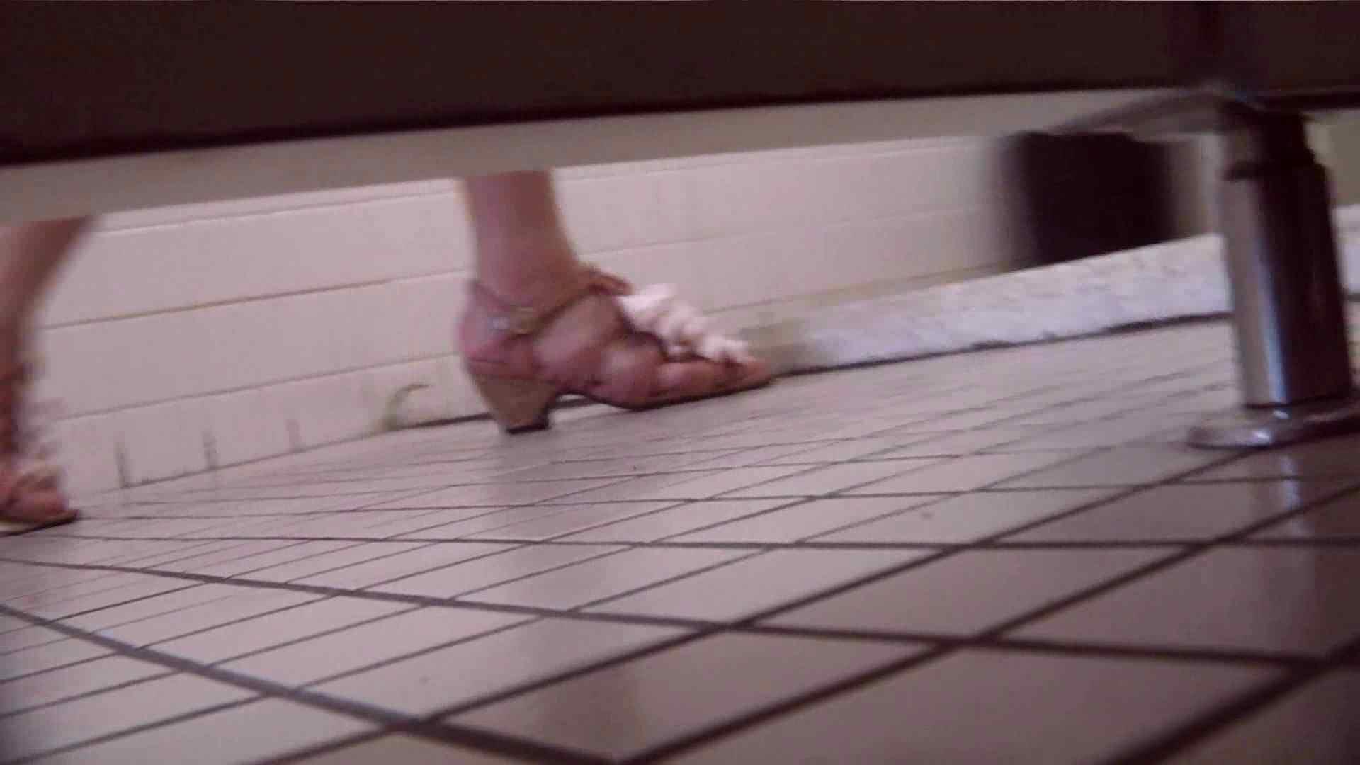 お銀さんの「洗面所突入レポート!!」Nol.13 OLハメ撮り  29Pix 24