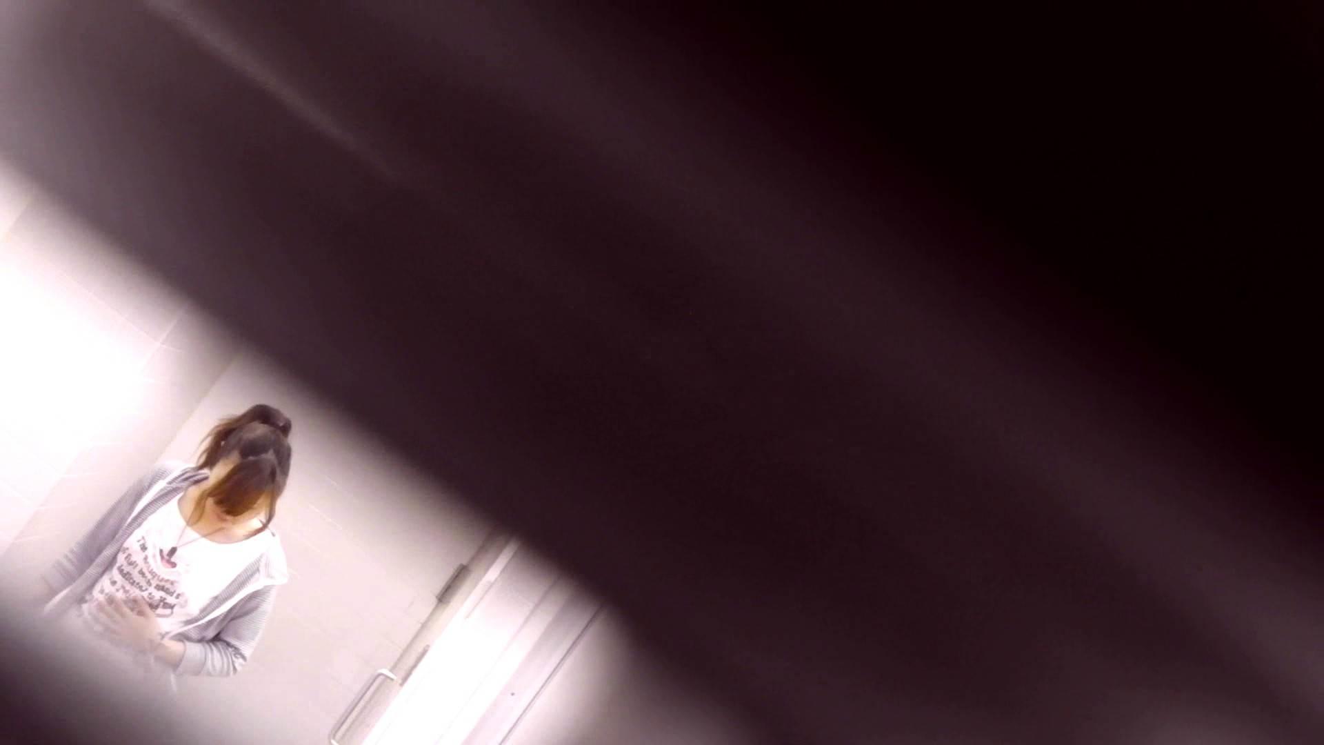 お銀さんの「洗面所突入レポート!!」Nol.13 OLハメ撮り  29Pix 28