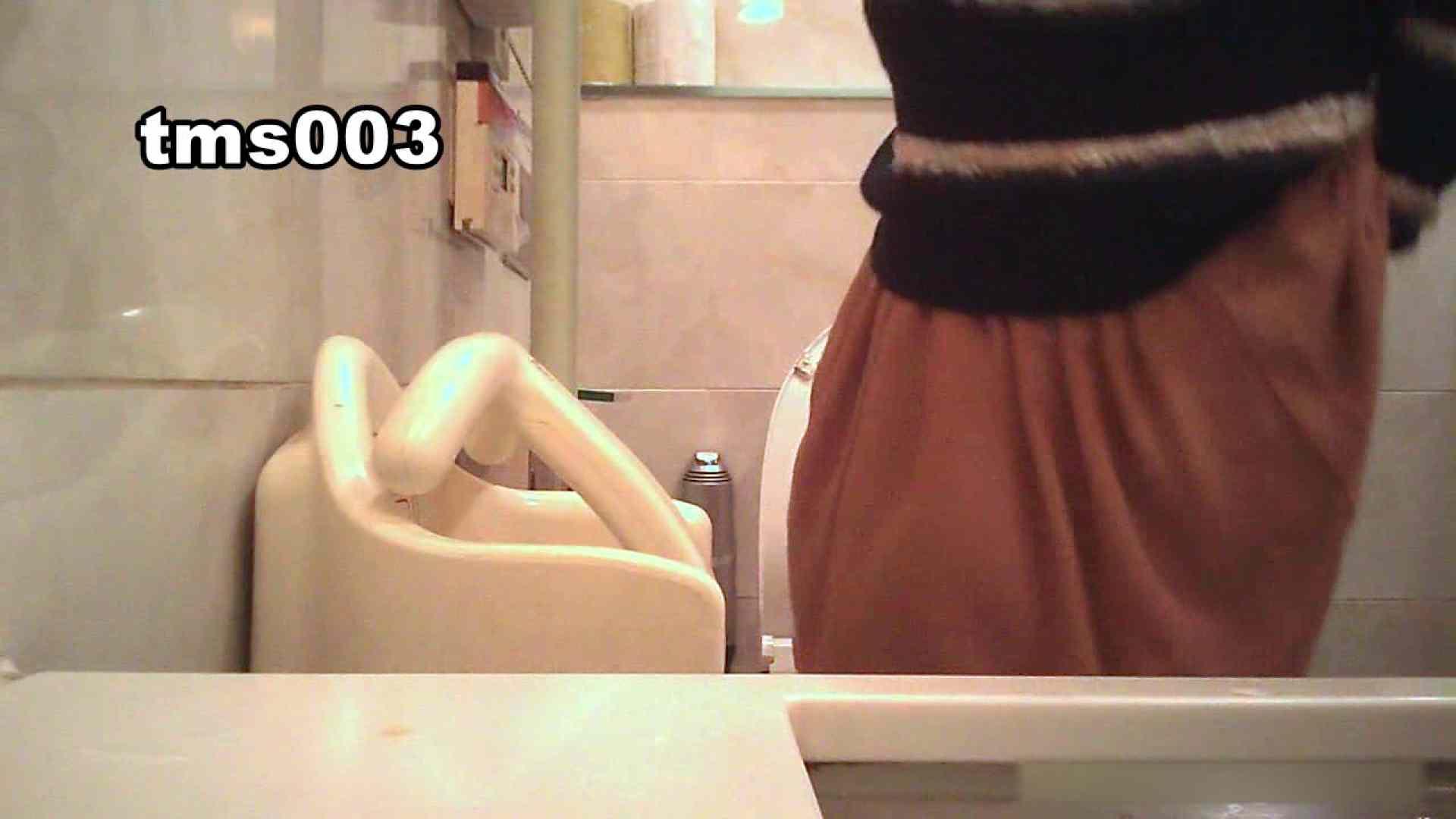 トイメンの割れ目 vol.003 OLハメ撮り  27Pix 23