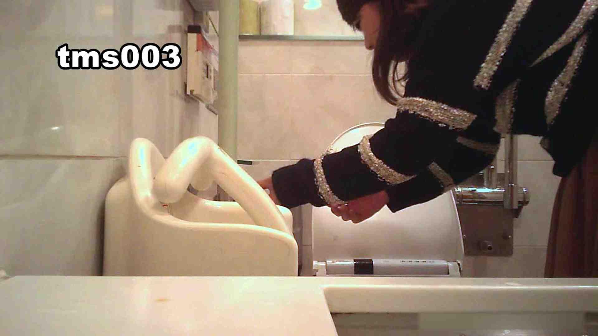 トイメンの割れ目 vol.003 OLハメ撮り  27Pix 24