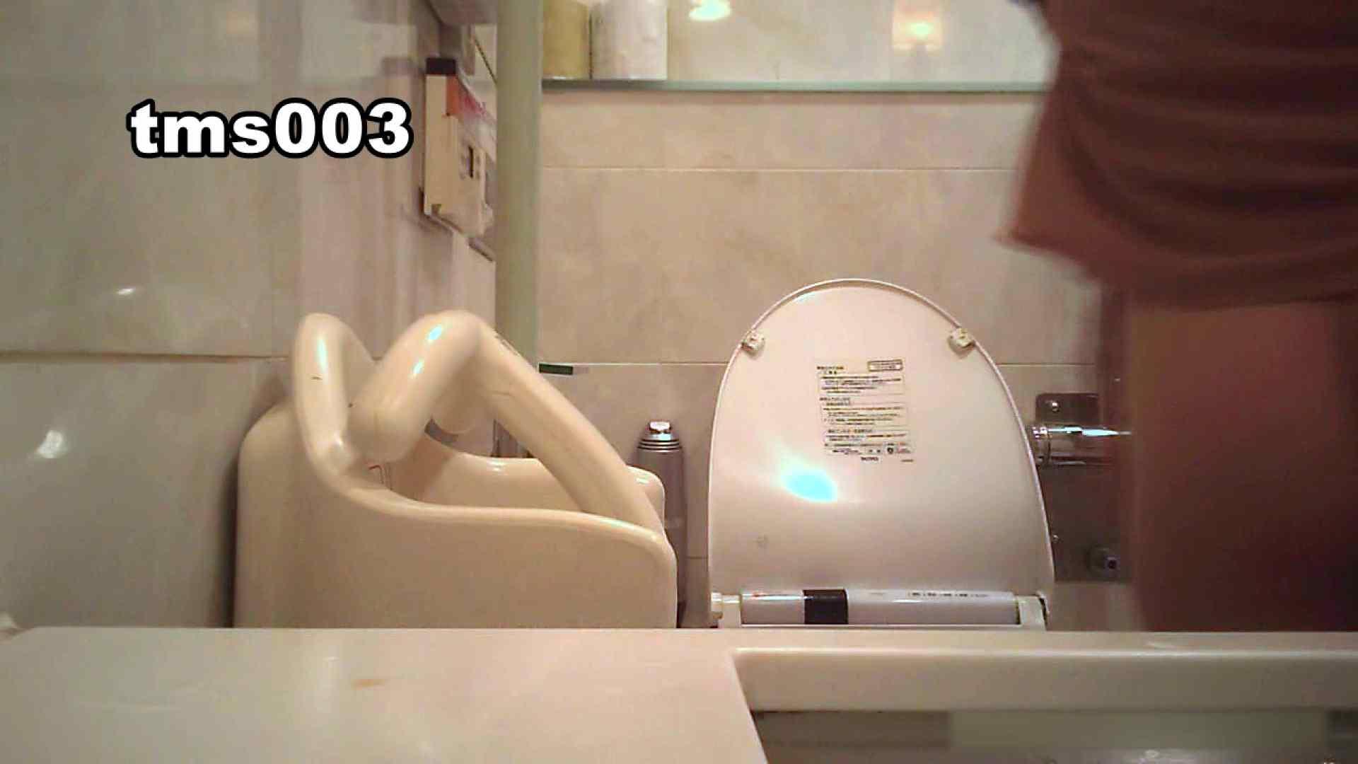 トイメンの割れ目 vol.003 OLハメ撮り  27Pix 26