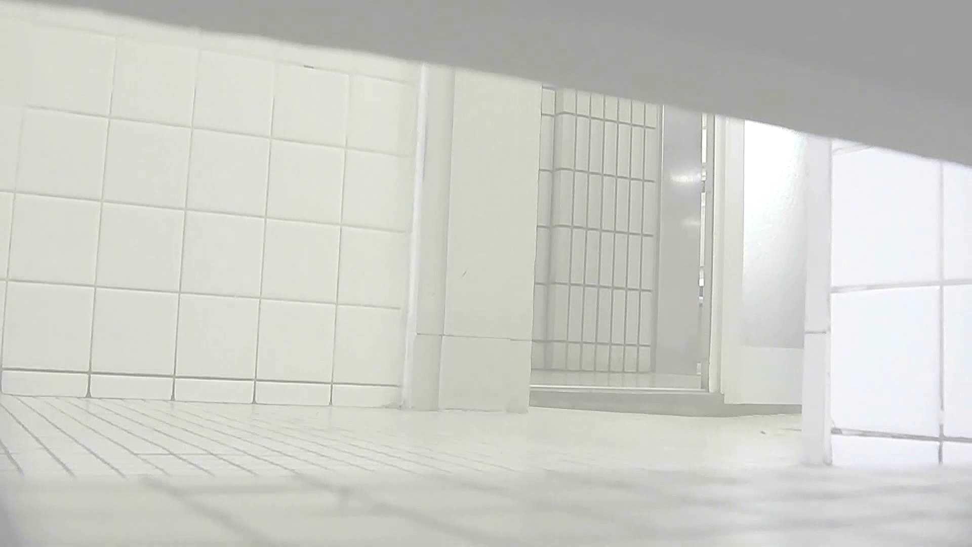 洗面所特攻隊 vol.X さらば!!特攻隊。【2015・08位】 洗面所  48Pix 9
