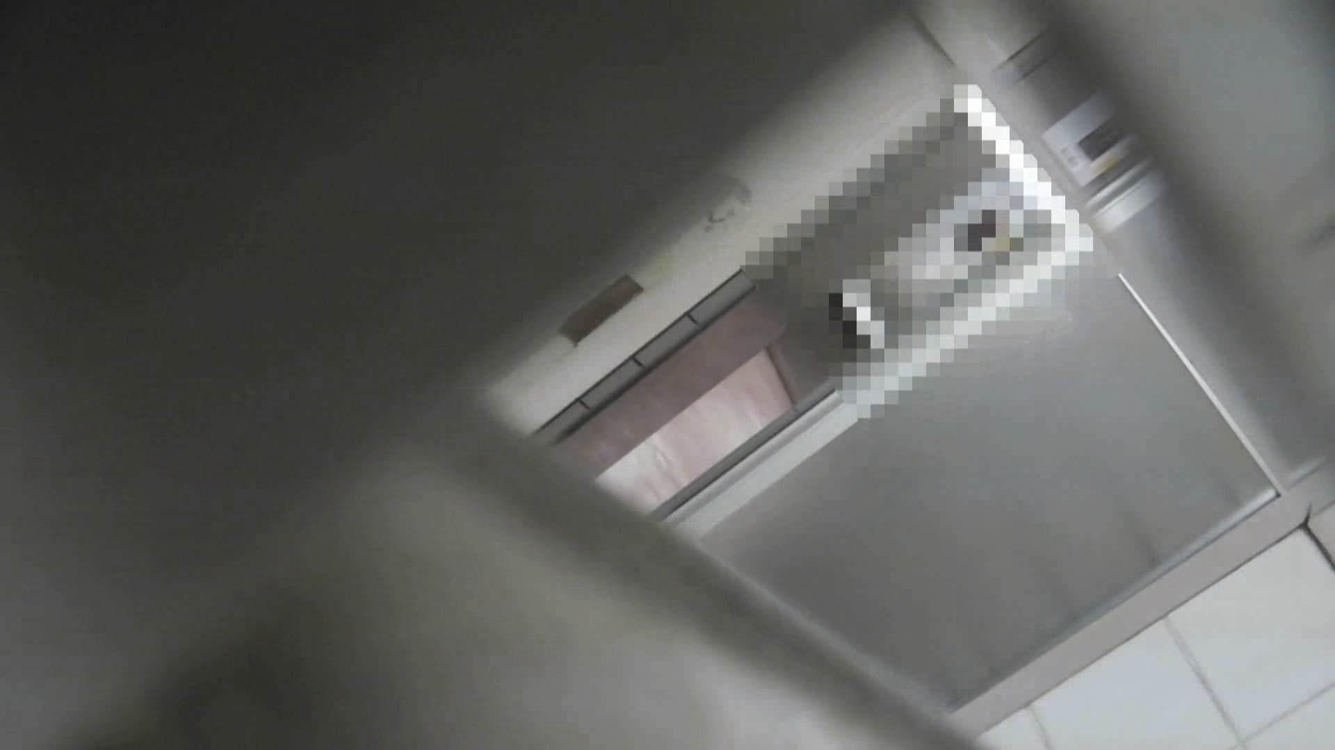 洗面所特攻隊vol.013 OLハメ撮り  99Pix 56