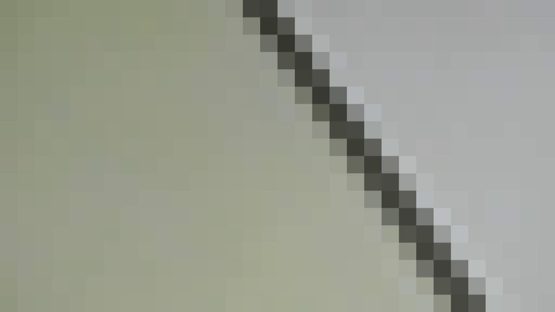 洗面所特攻隊vol.013 OLハメ撮り  99Pix 90