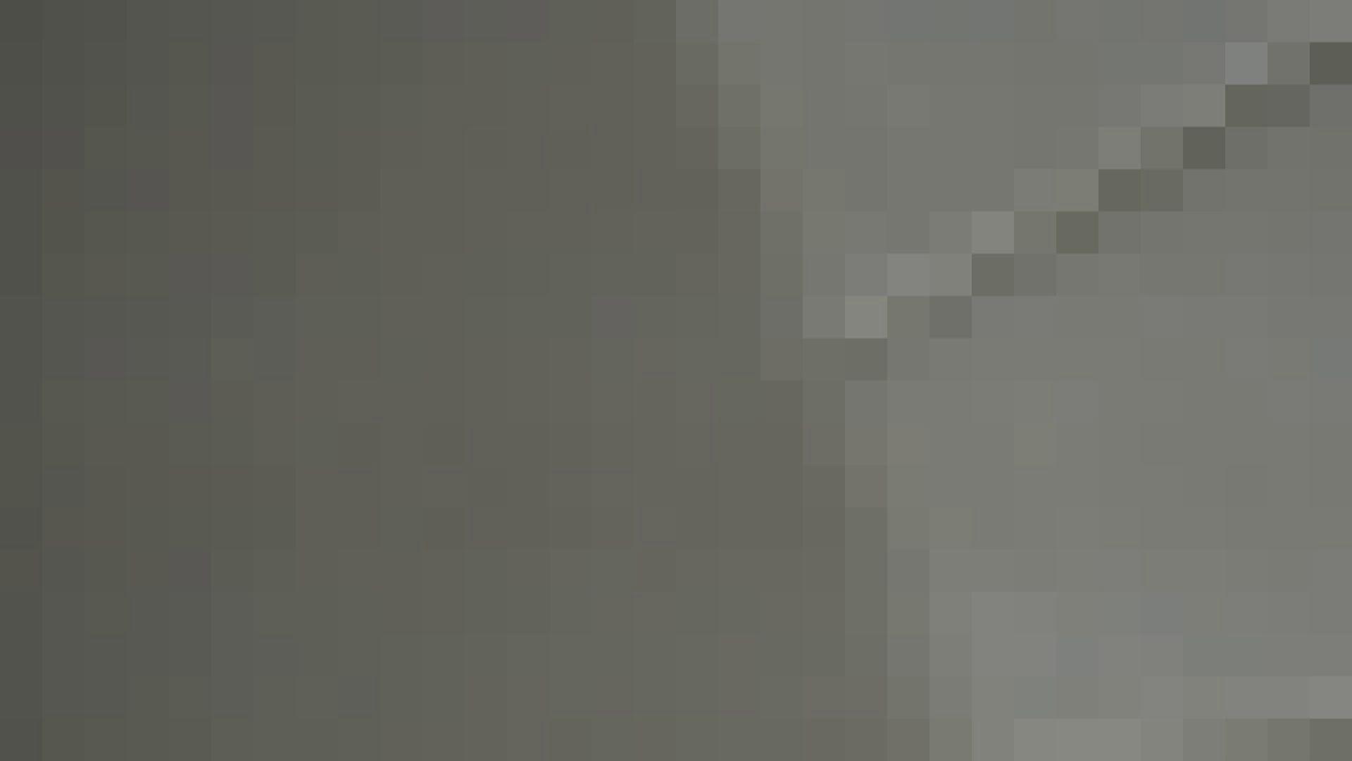 洗面所特攻隊vol.013 OLハメ撮り  99Pix 99