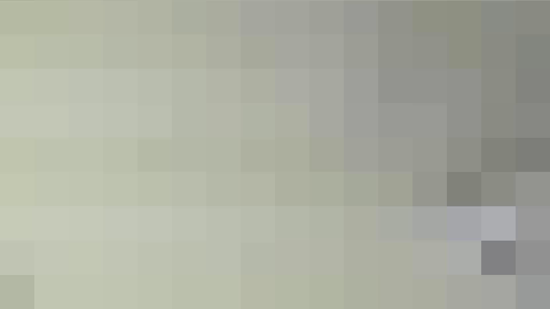 洗面所特攻隊 vol.026 お嬢さんかゆいの? OLハメ撮り  38Pix 18