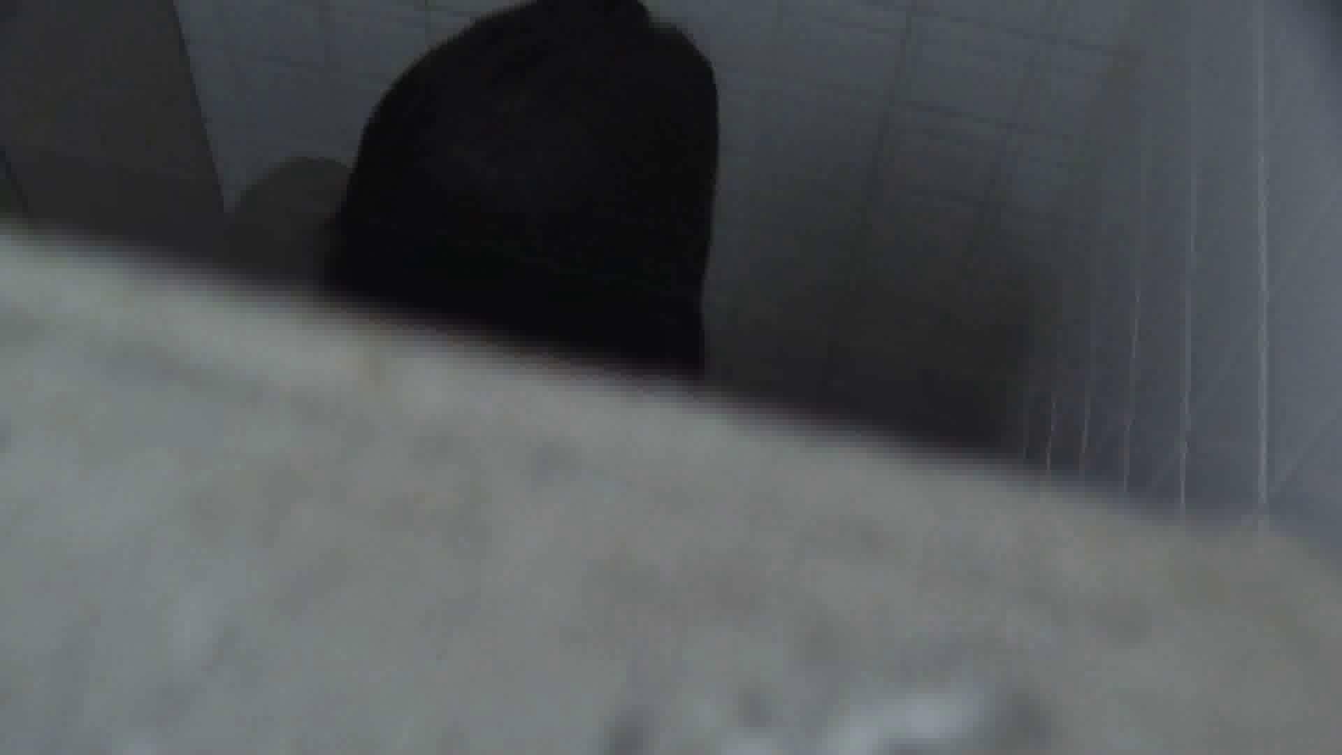 洗面所特攻隊 vol.026 お嬢さんかゆいの? OLハメ撮り  38Pix 33