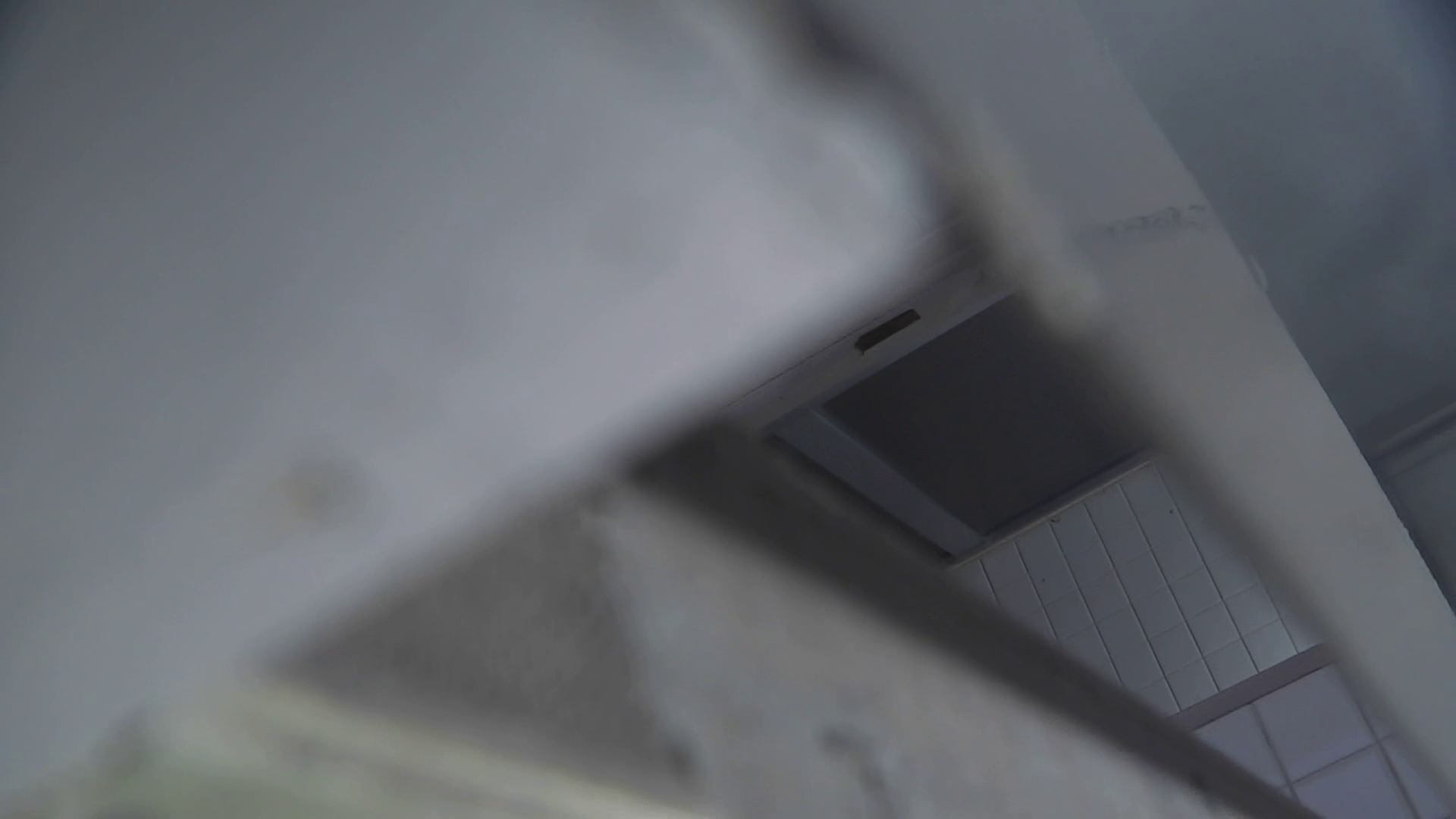 洗面所特攻隊 vol.026 お嬢さんかゆいの? OLハメ撮り  38Pix 35