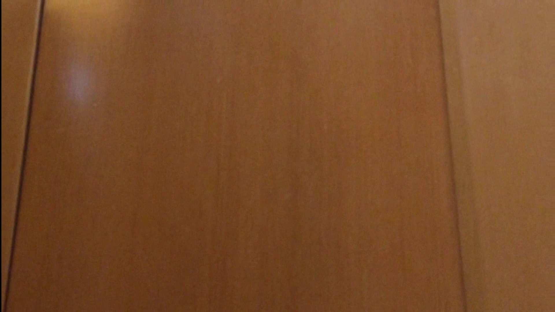 隣国化粧室下から御免!! No.04 美女ハメ撮り  100Pix 28