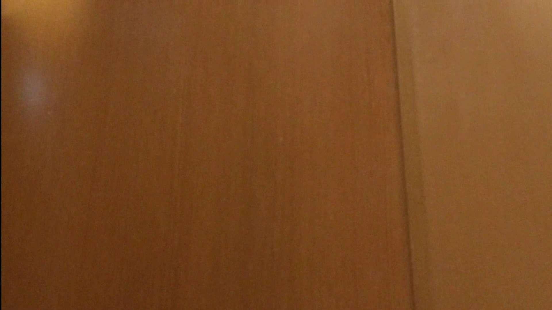 隣国化粧室下から御免!! No.04 美女ハメ撮り  100Pix 30