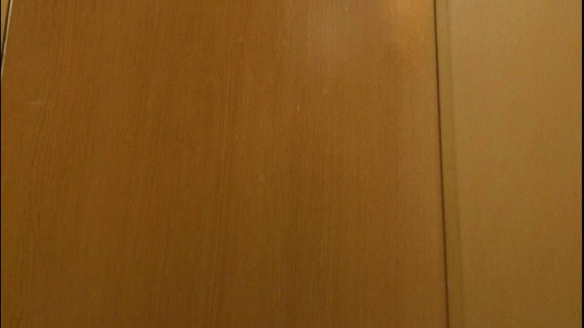 隣国化粧室下から御免!! No.13 美女ハメ撮り  64Pix 8