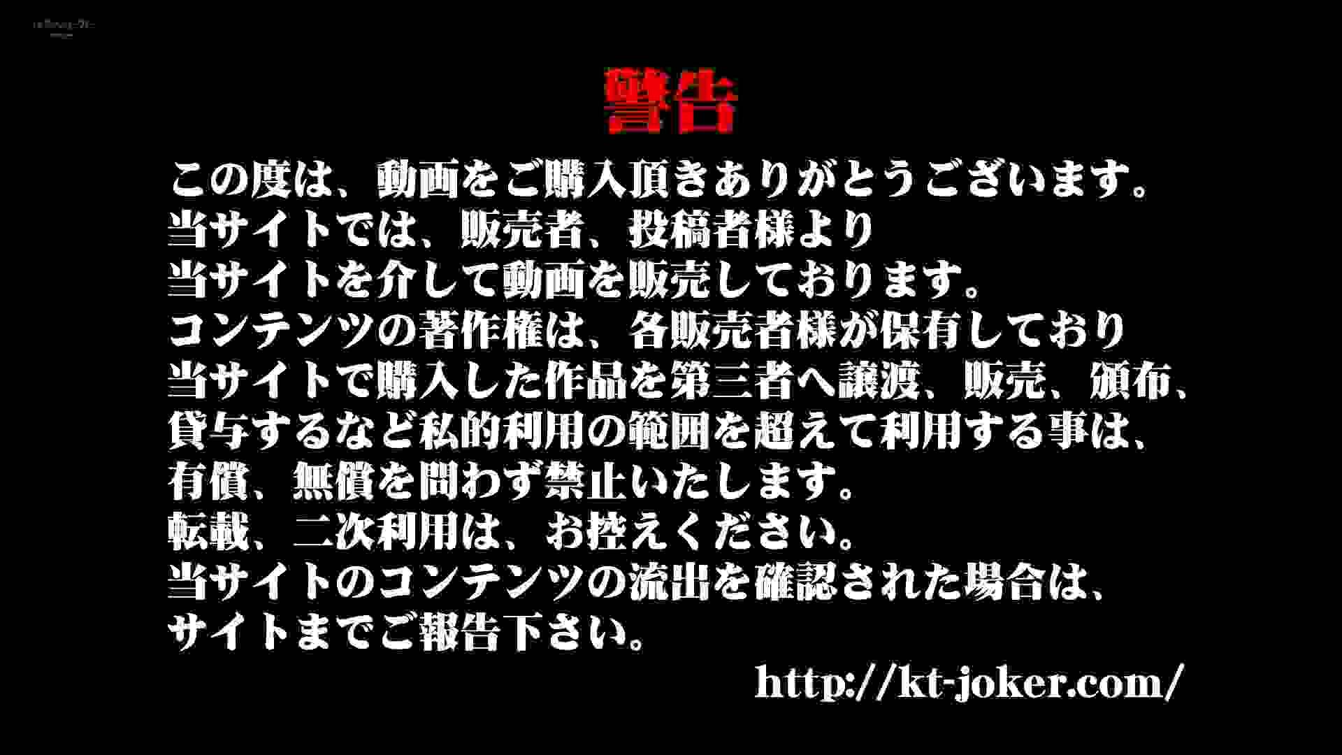 和式洋式七変化 Vol.28 綺麗に撮れました。(ー_ー)!! OLハメ撮り  32Pix 1