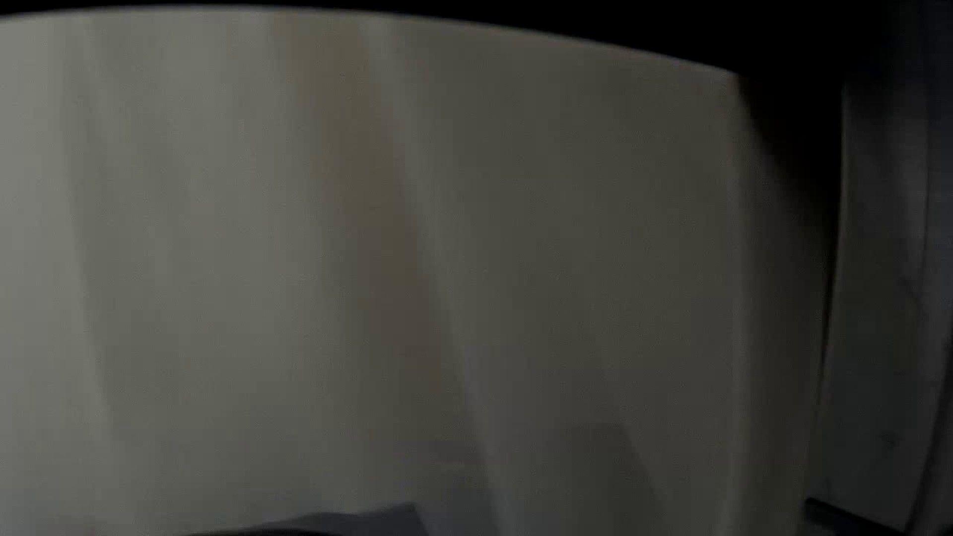 某有名大学女性洗面所 vol.34 潜入シリーズ  94Pix 39