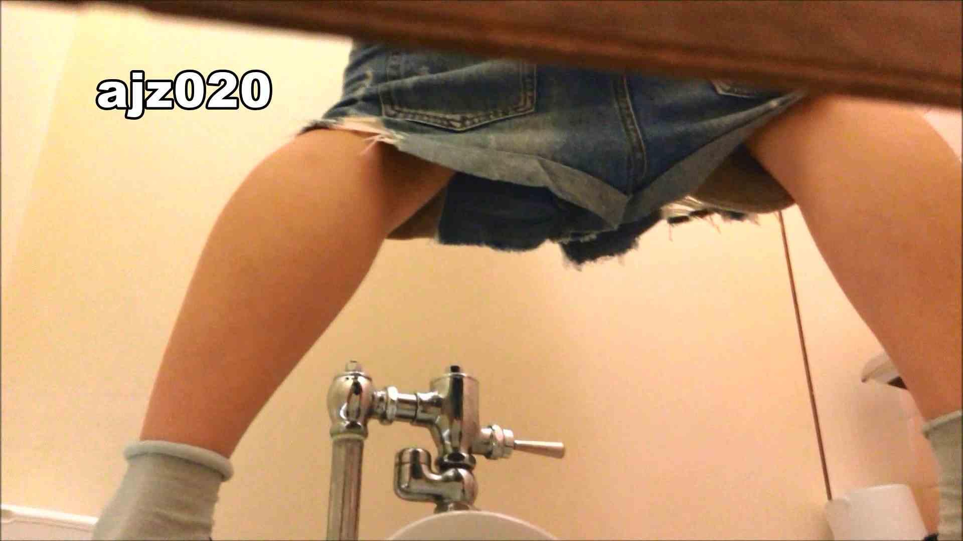 某有名大学女性洗面所 vol.20 洗面所  67Pix 8